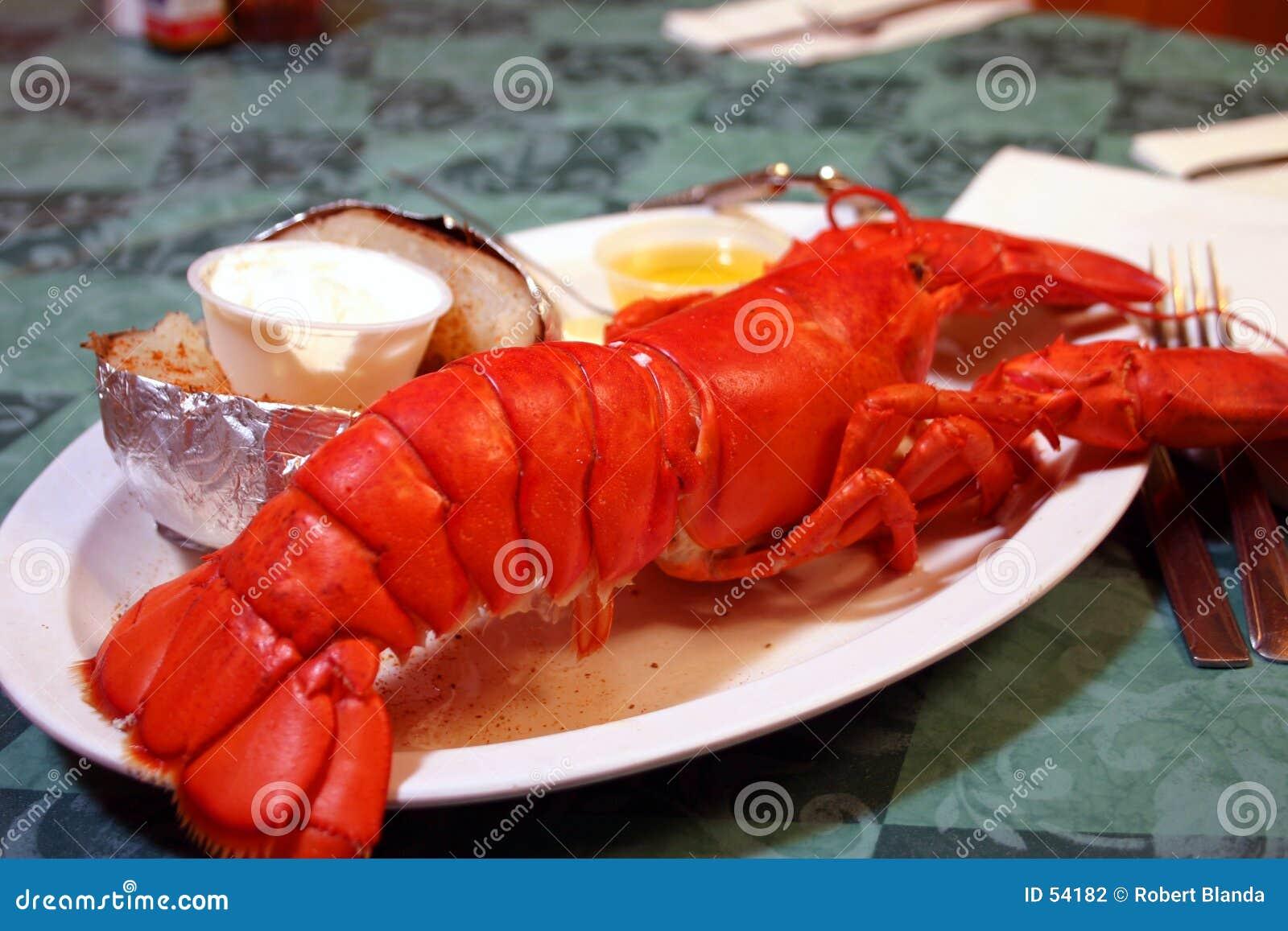 De gehele Schotel van de Zeekreeft van Maine
