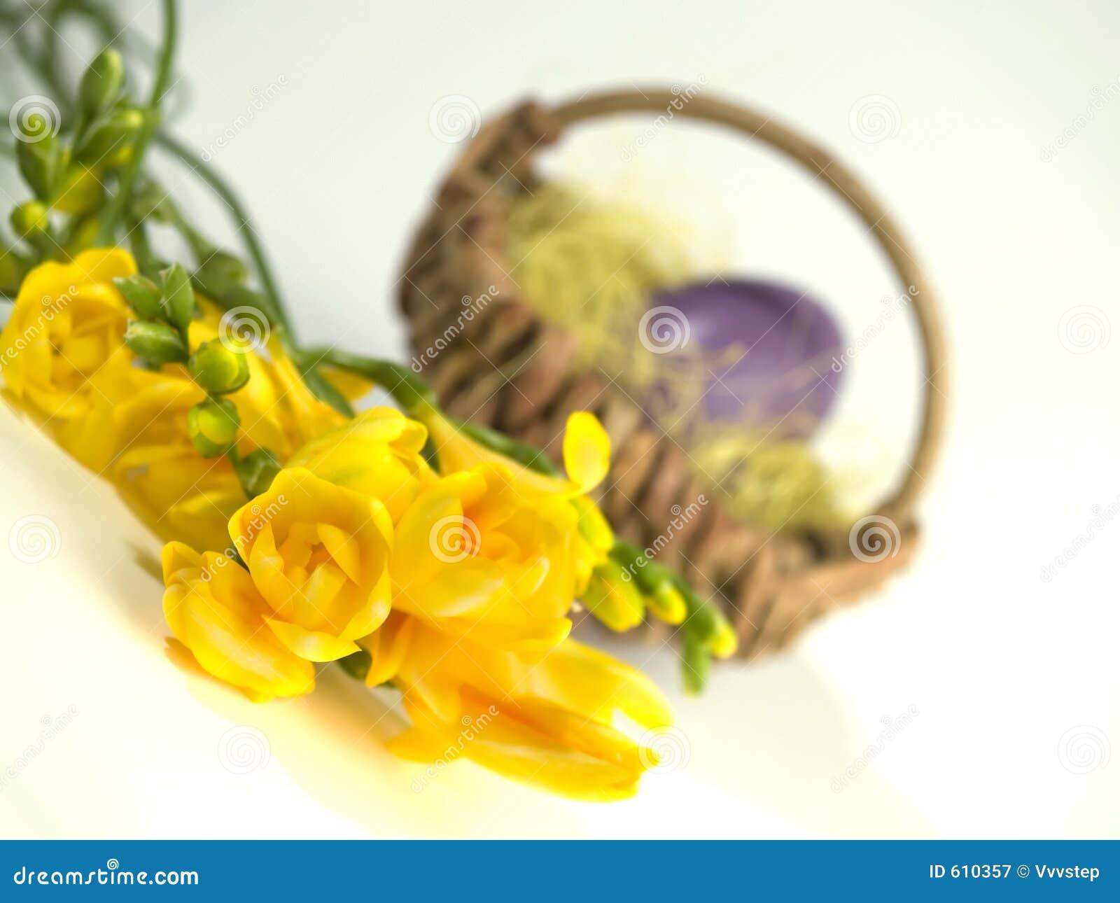 De gele bloemen van Pasen