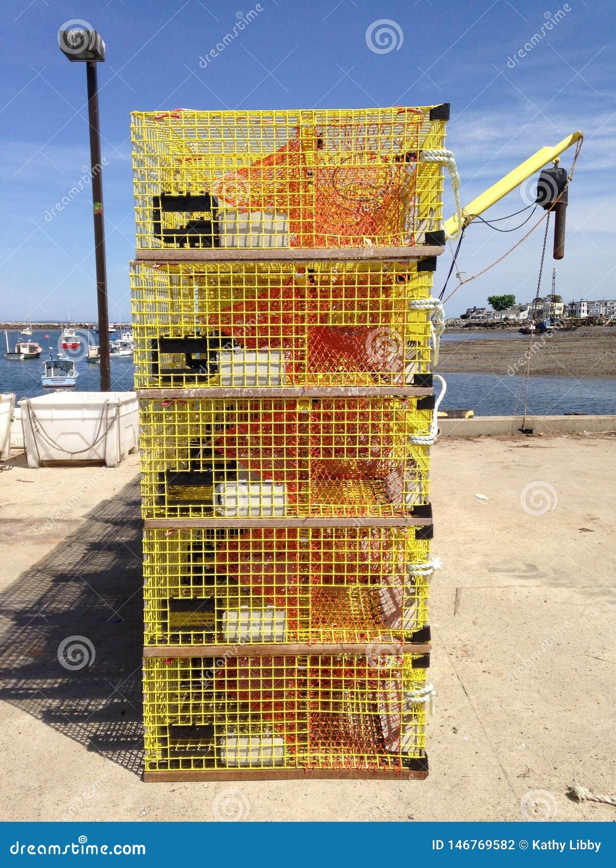 De gele Vallen van de Zeekreeft