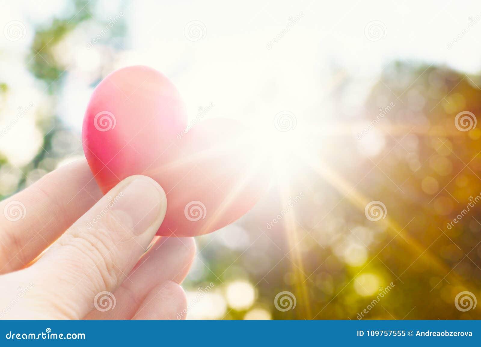 De gevormde pruim van de persoonsholding hart tegen de zon De levensstijlbeeld van het liefdeconcept met zongloed De dagachtergro