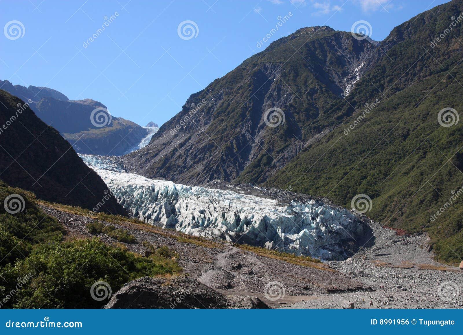 De Gletsjer van de vos