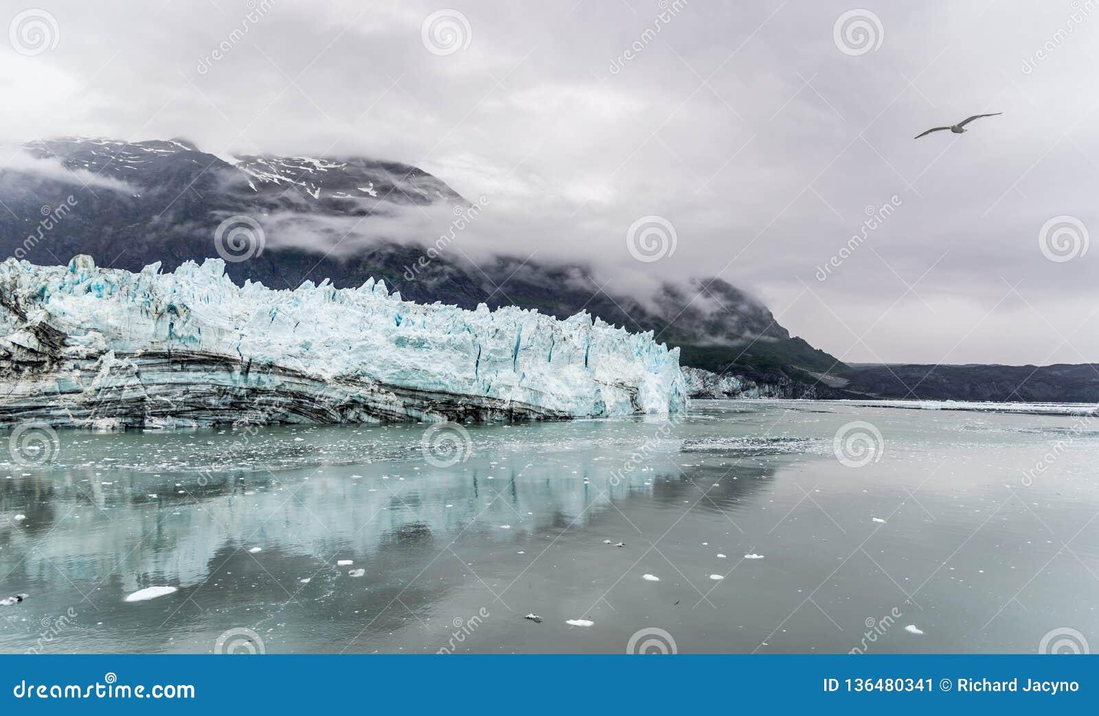 De Gletsjer van Hopkins van Johns Het Nationale Park van de Baai van de gletsjer