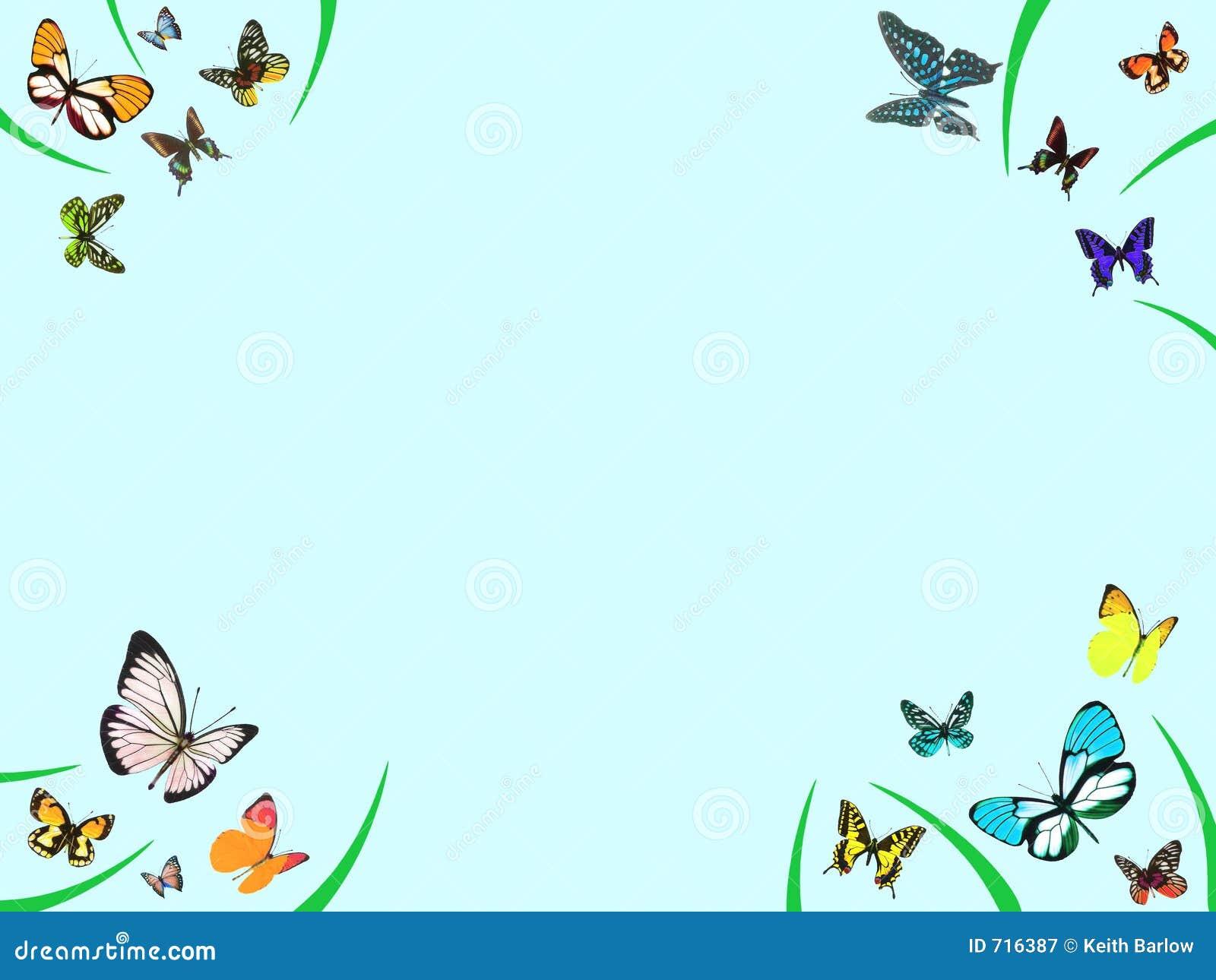 De grens van de vlinder