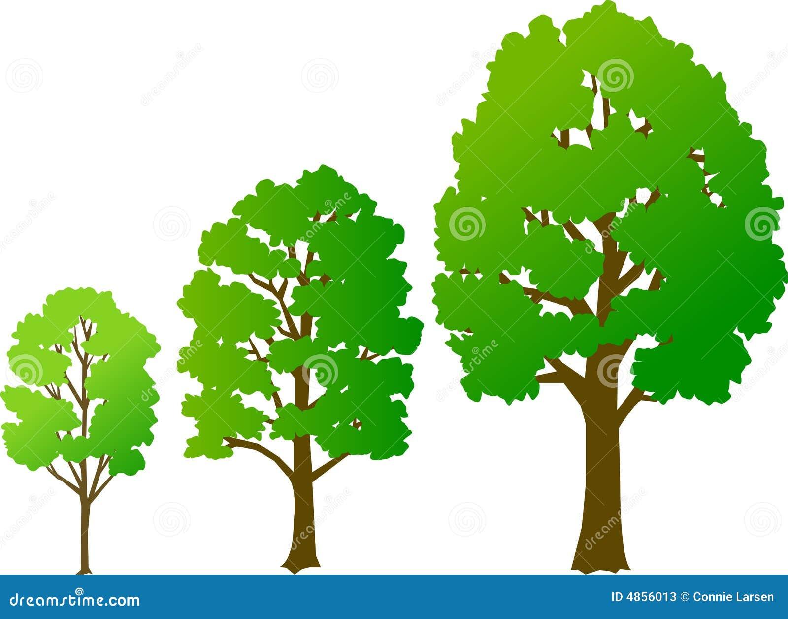 De Groei van de boom/eps