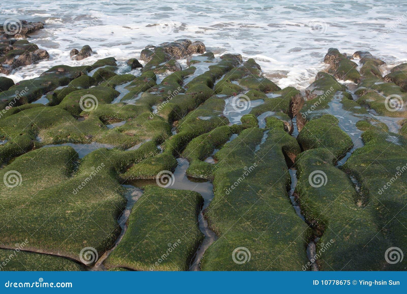 De groene Ertsader van Laomei