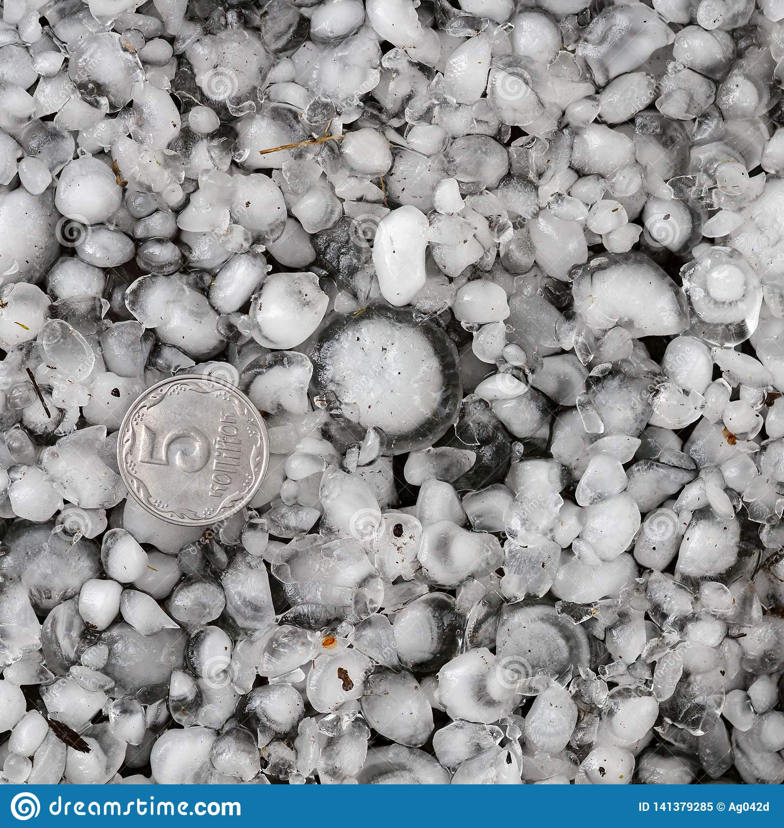 De hagelstenen ter plaatse na hagelbui, hagel van grote grootte, begroeten met maat met een groter muntstuk