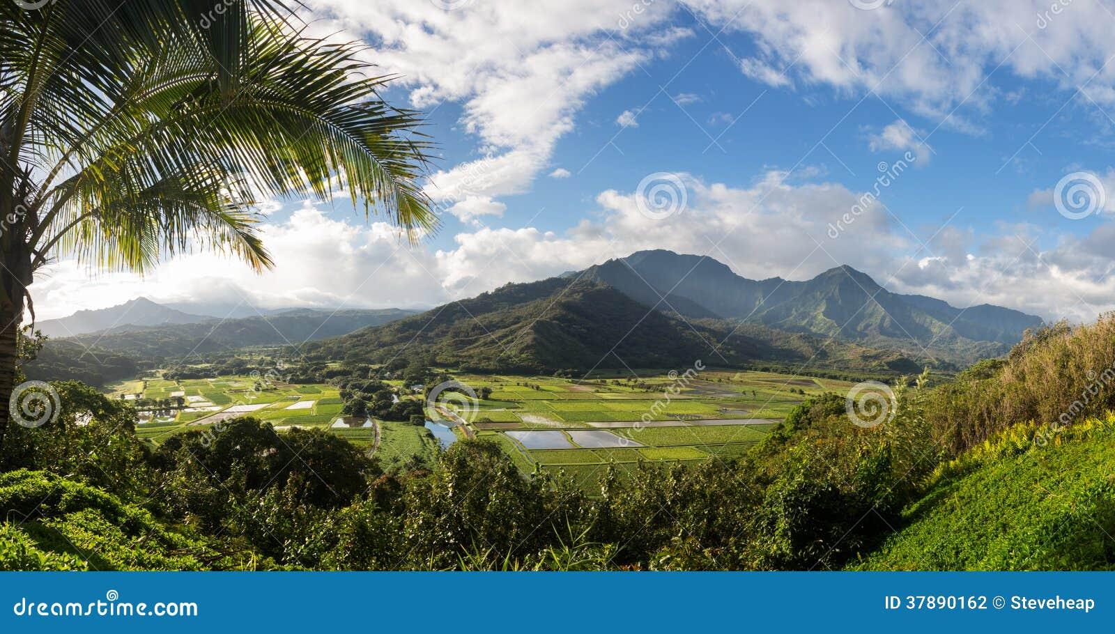 De Hanaleivallei van Princeville overziet Kauai