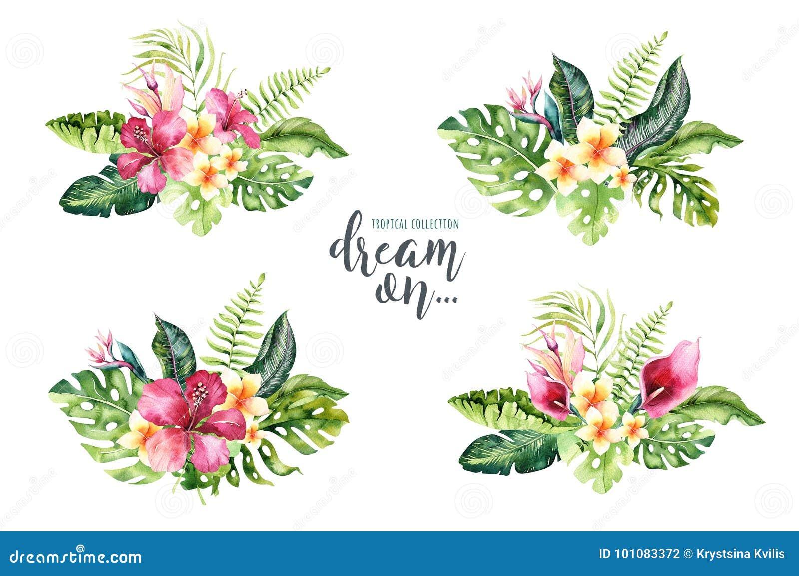 De hand getrokken boeketten van de waterverf tropische bloem Exotische palmbladen, wildernisboom, tropische de plantkundeelemente