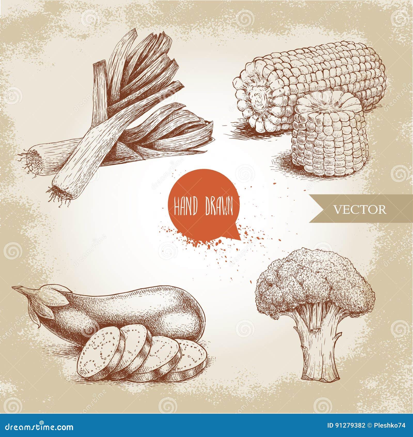 De hand getrokken geplaatste groenten van de schetsstijl Prei met plakken, aubergine met gesneden aubergine, broccoli en suikerma