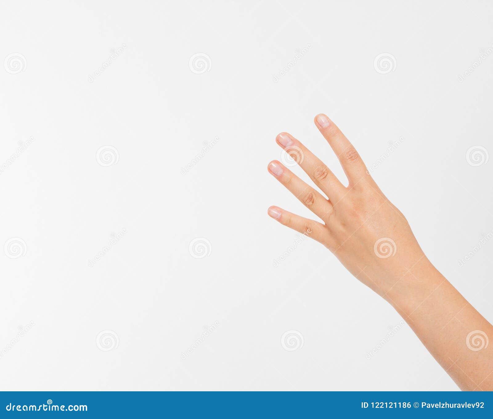 De hand van de meisjesvrouw ` s toont vier vingers Gebaar Menselijke hand Spot omhoog De ruimte van het exemplaar malplaatje spat