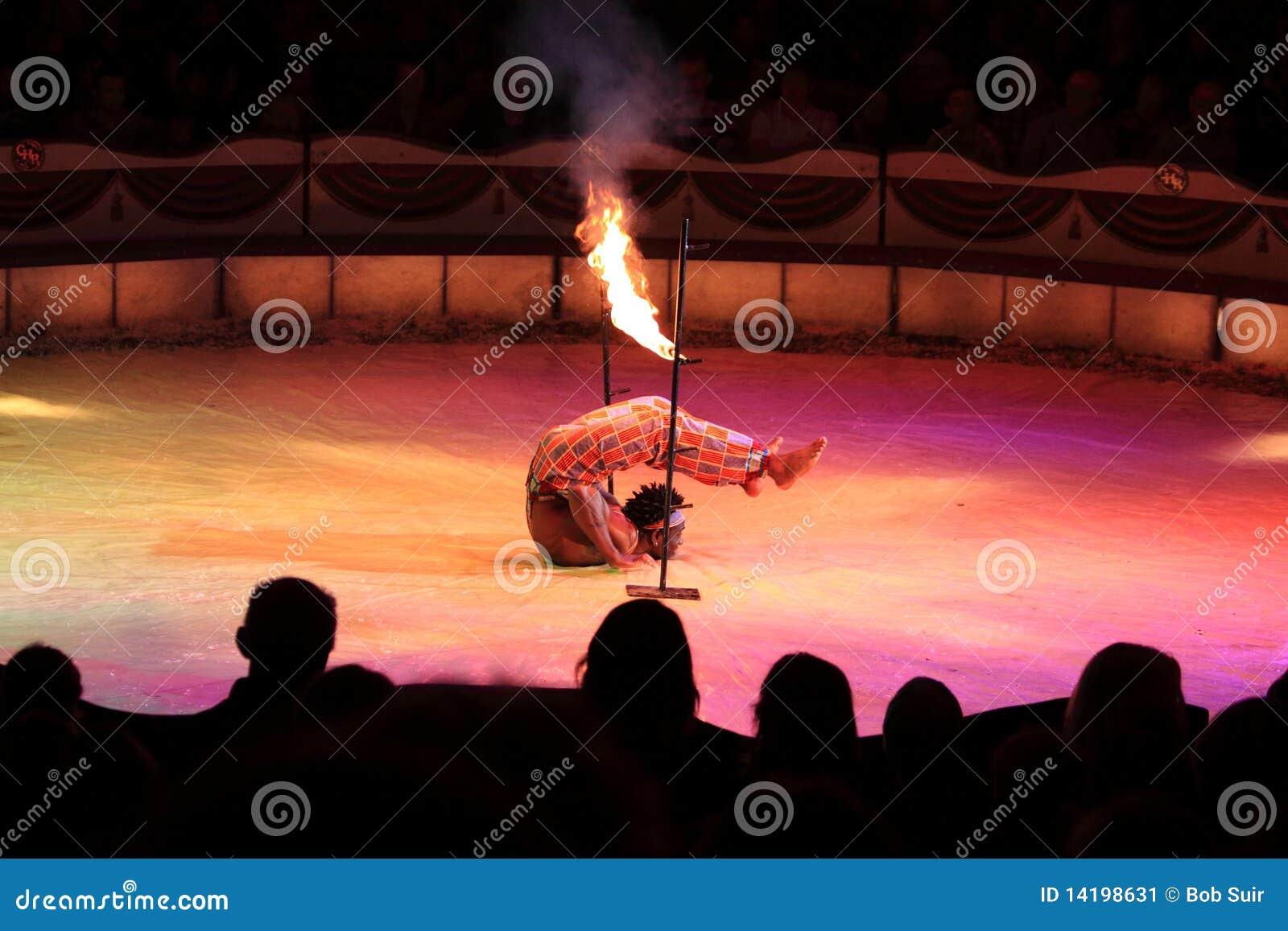 De handeling van het circus