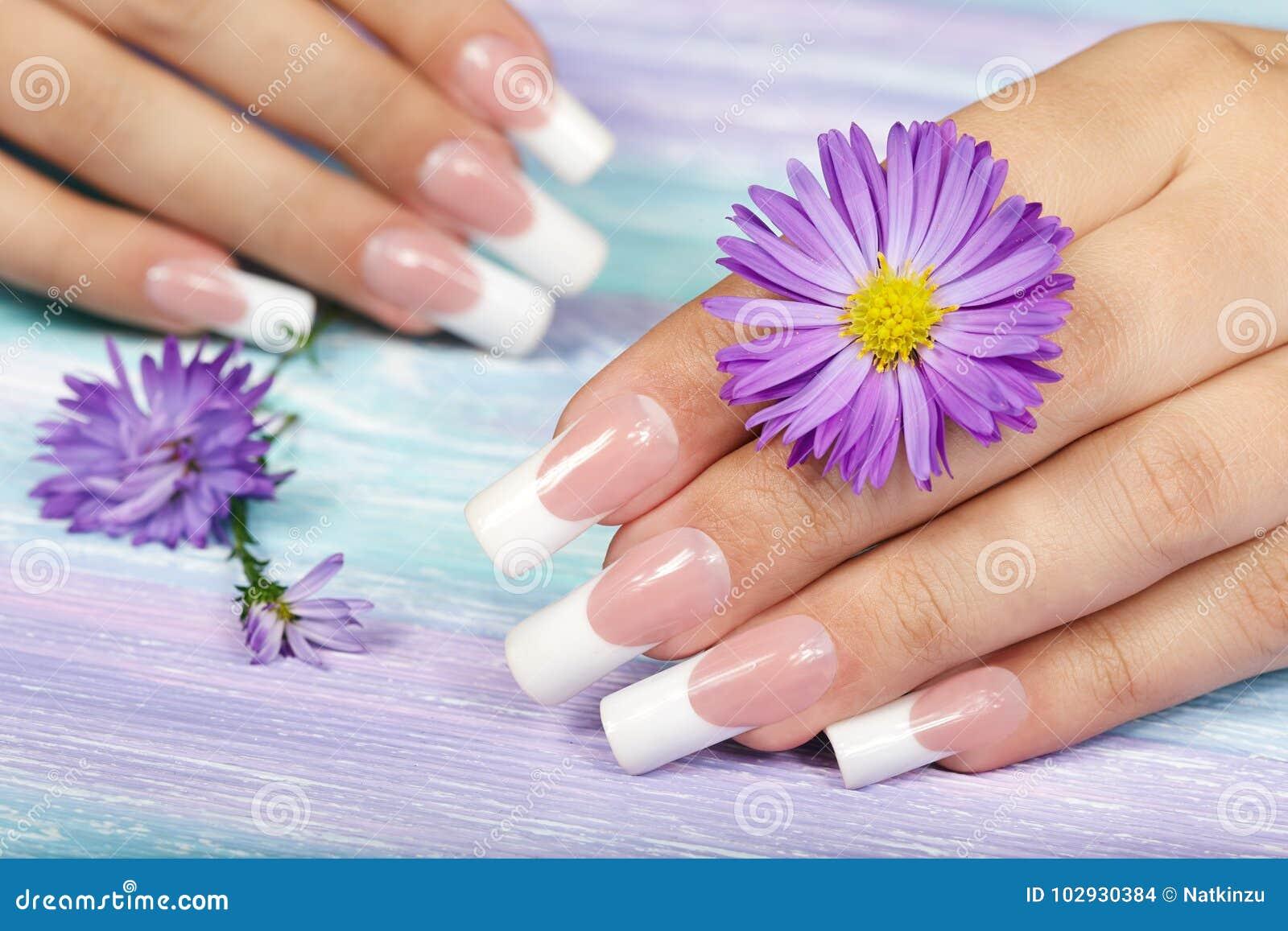 De handen met het lange kunstmatige Frans manicured spijkers