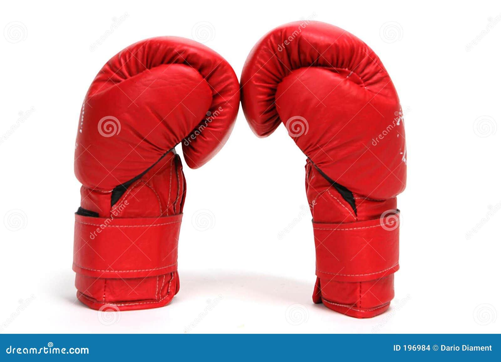 De Handschoenen van de doos