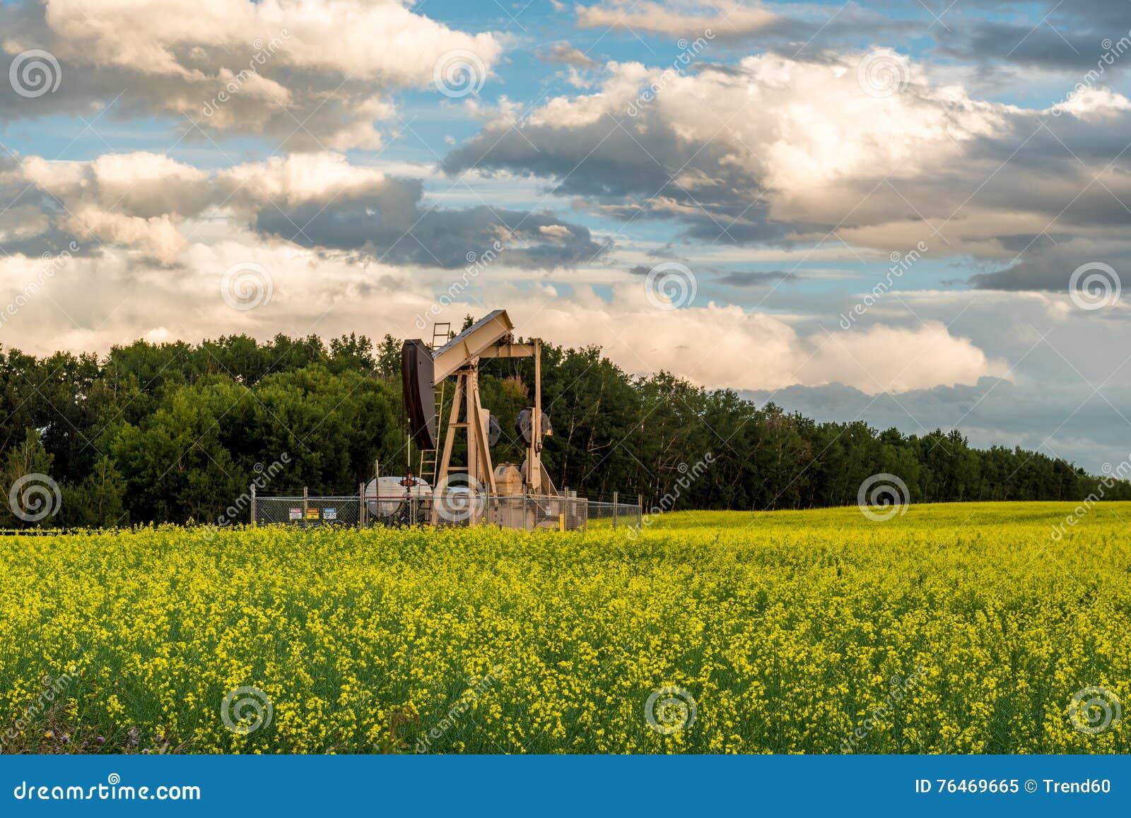 De Hefboom van de Pomp van de oliebron