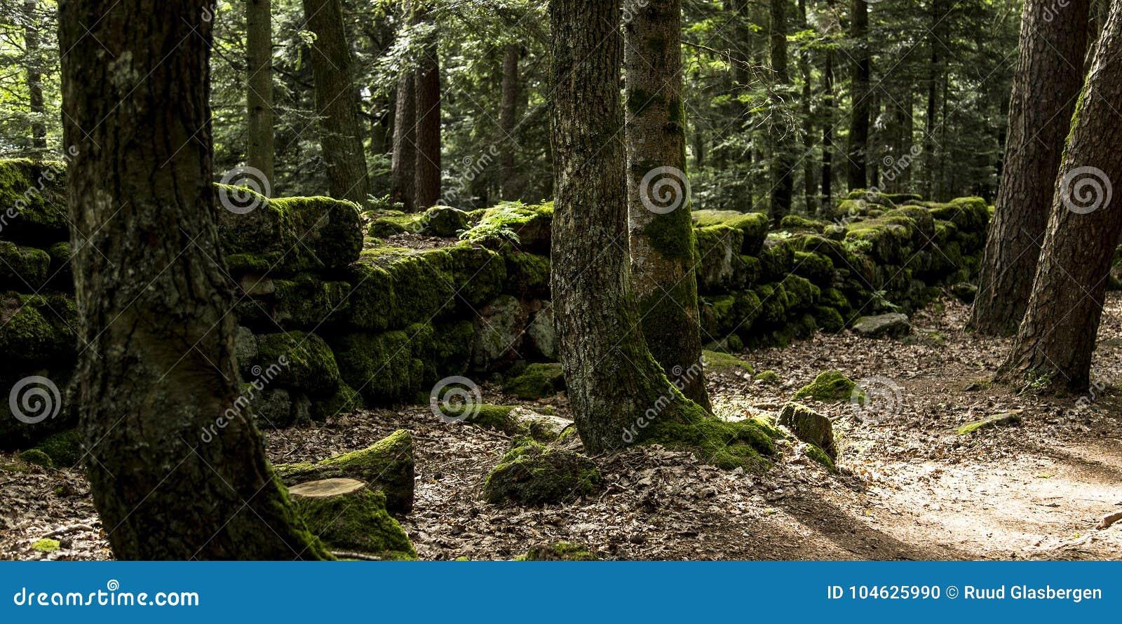 Download De Heidense Muur, Mont Sainte Odile, Ottrott, Alsage, Frankrijk Stock Foto - Afbeelding bestaande uit geheimzinnig, alsace: 104625990