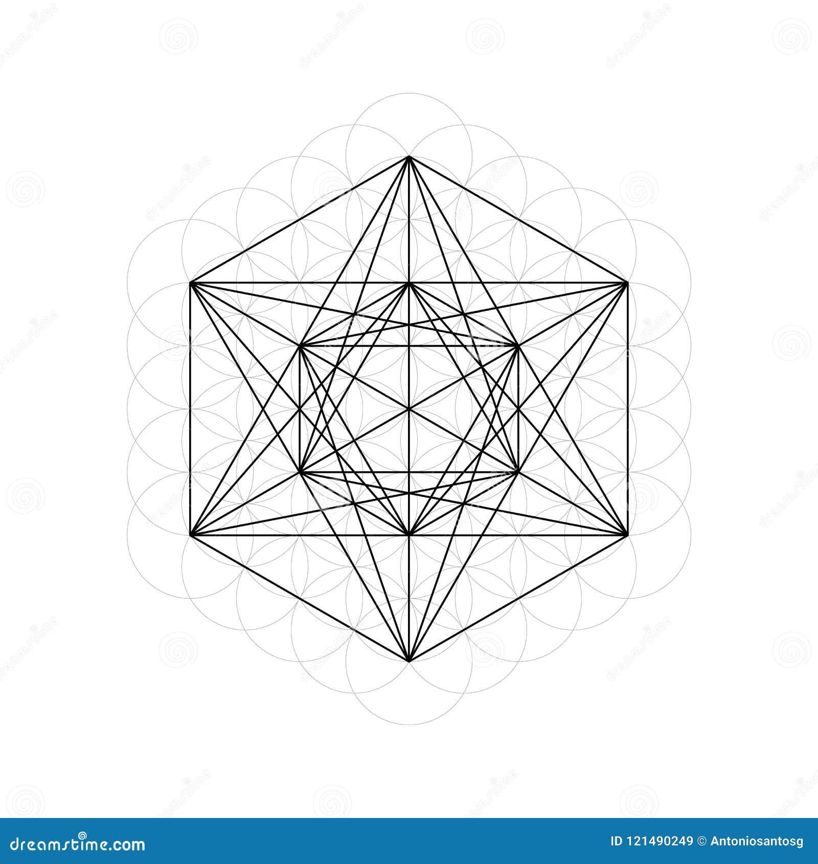 De heilige Ster van Meetkundedavids en Bloem van het Levens vectorillustratie