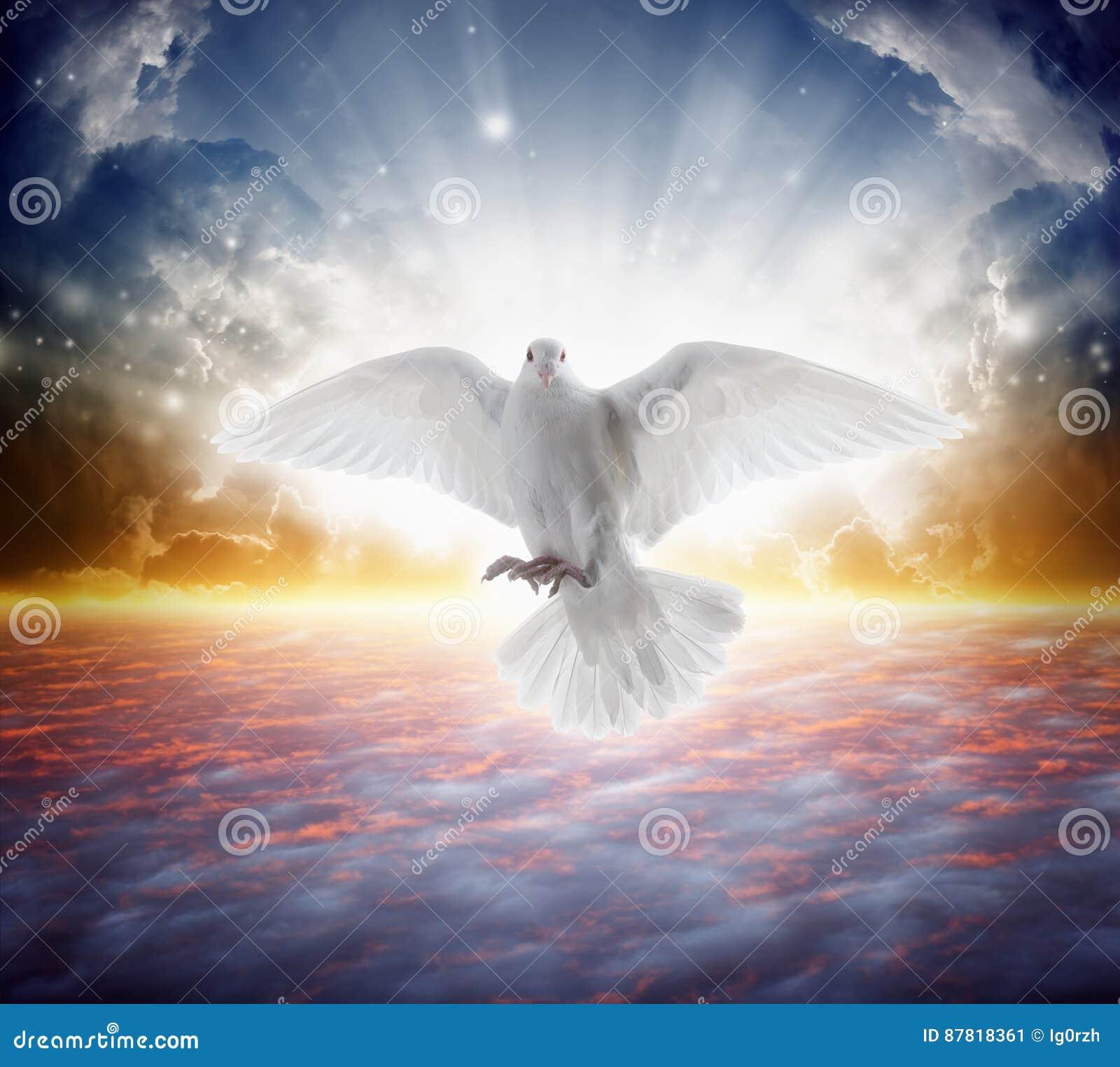 De heilige vliegen van de geestvogel in hemel, helder licht glanst van hemel