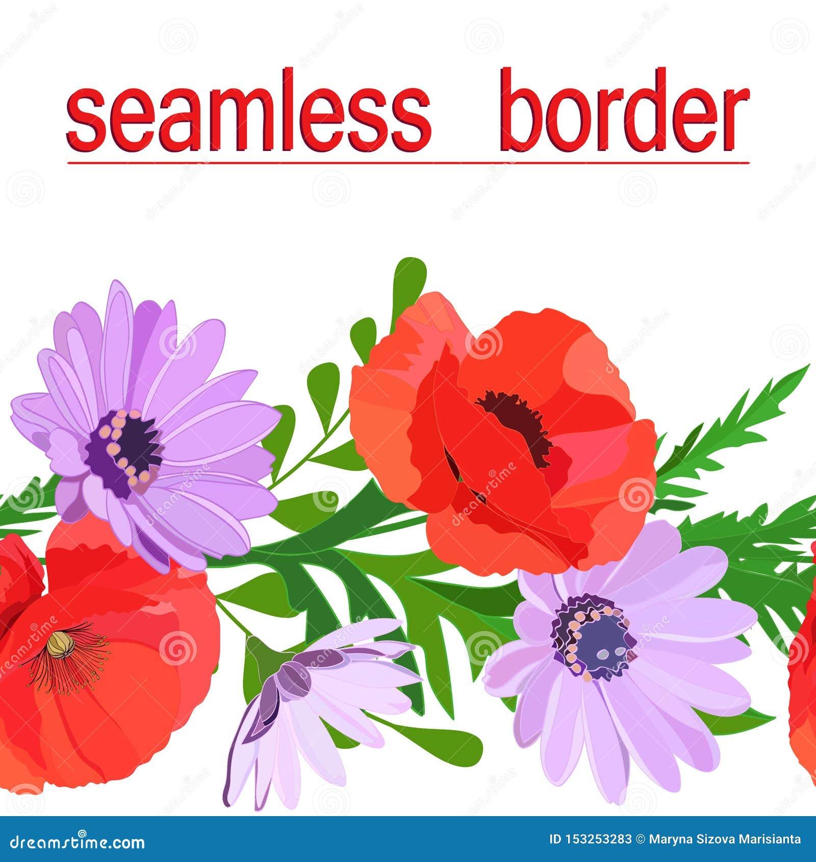 De heldere multi-colored naadloze grens van de zomer bloeit: rode papavers, gevoelige lilac madeliefjes, groene die bladeren op w