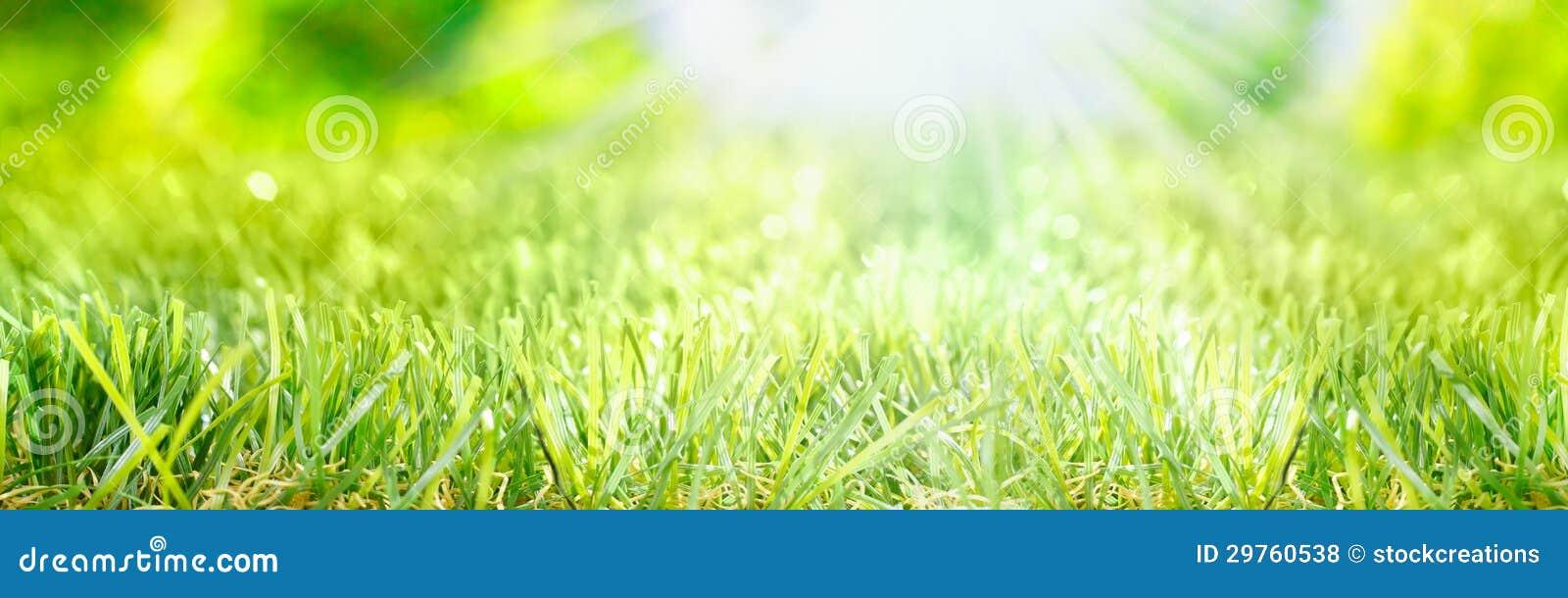De banner van de lente