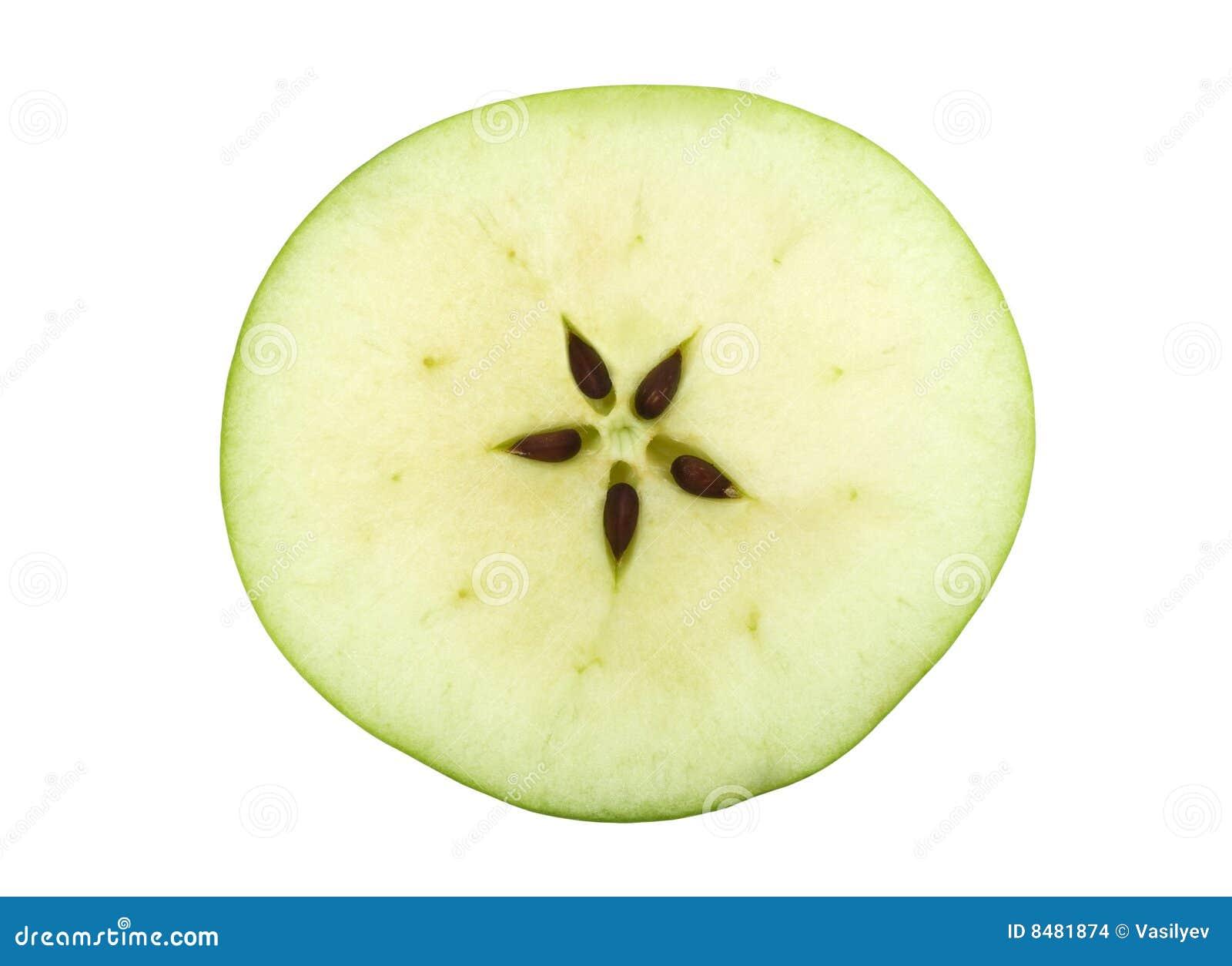 https://thumbs.dreamstime.com/z/de-helft-van-een-groene-appel-met-vijf-zaden-8481874.jpg