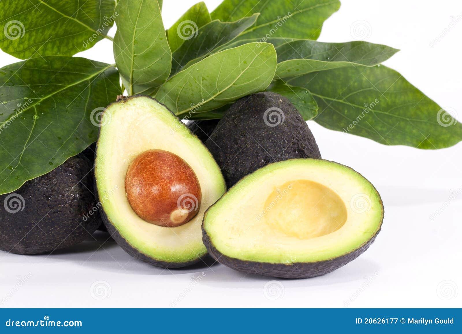 De Helften van de avocado