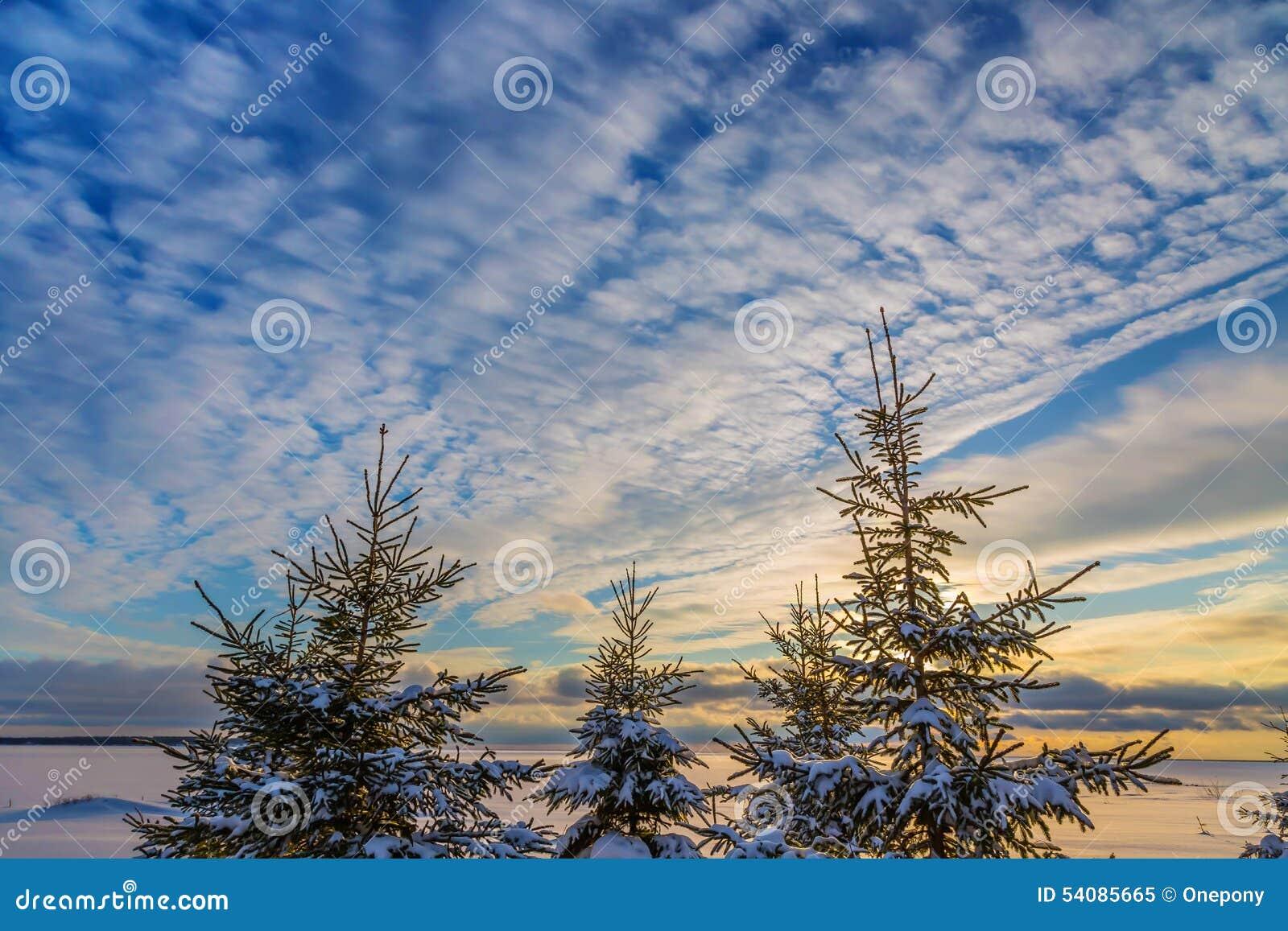 De hemel van de winter