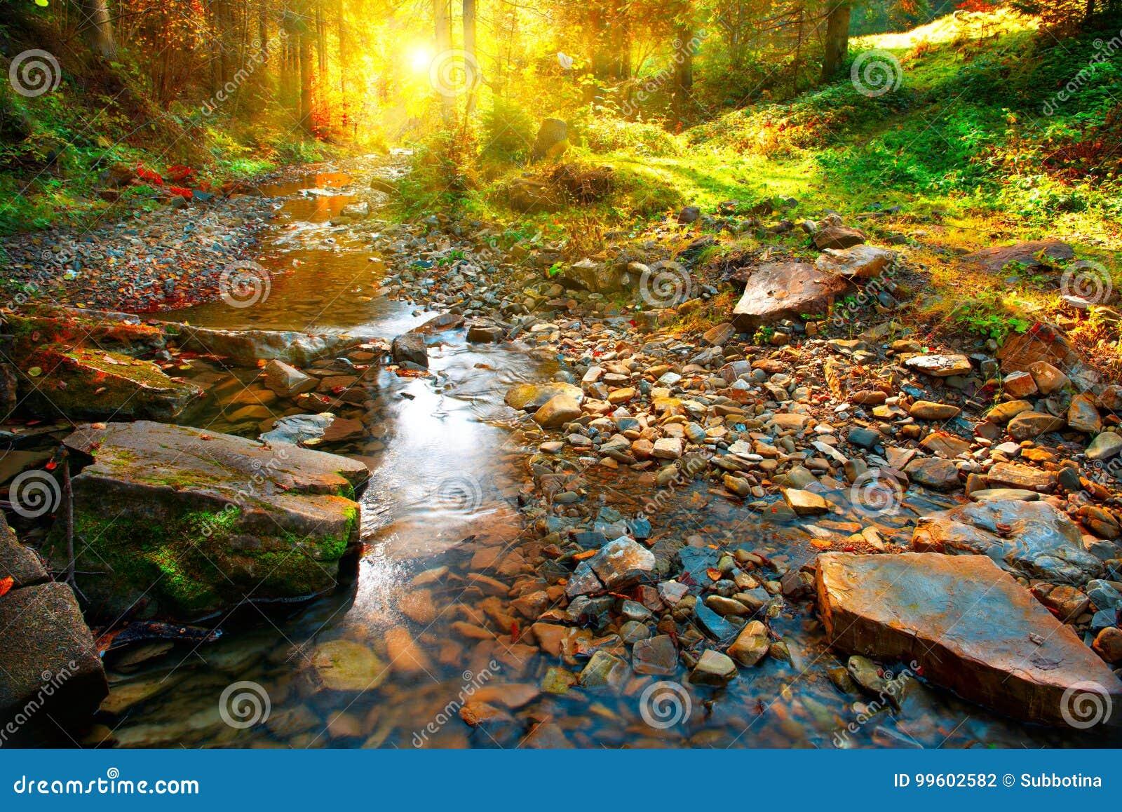 De herfst De berglente, boslandschap