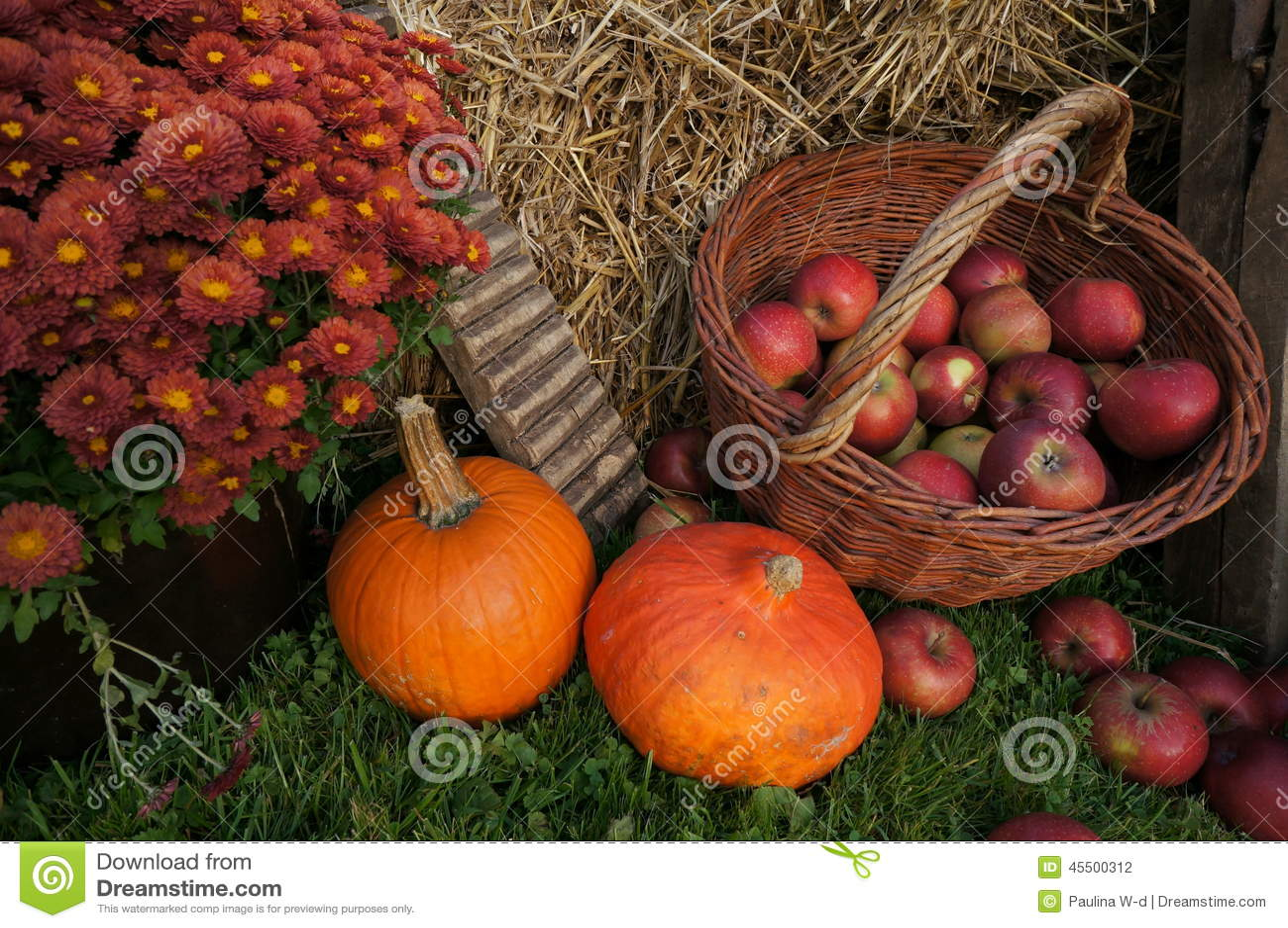 De herfst de decoratie rode en groene appelen in een for Decoratie herfst