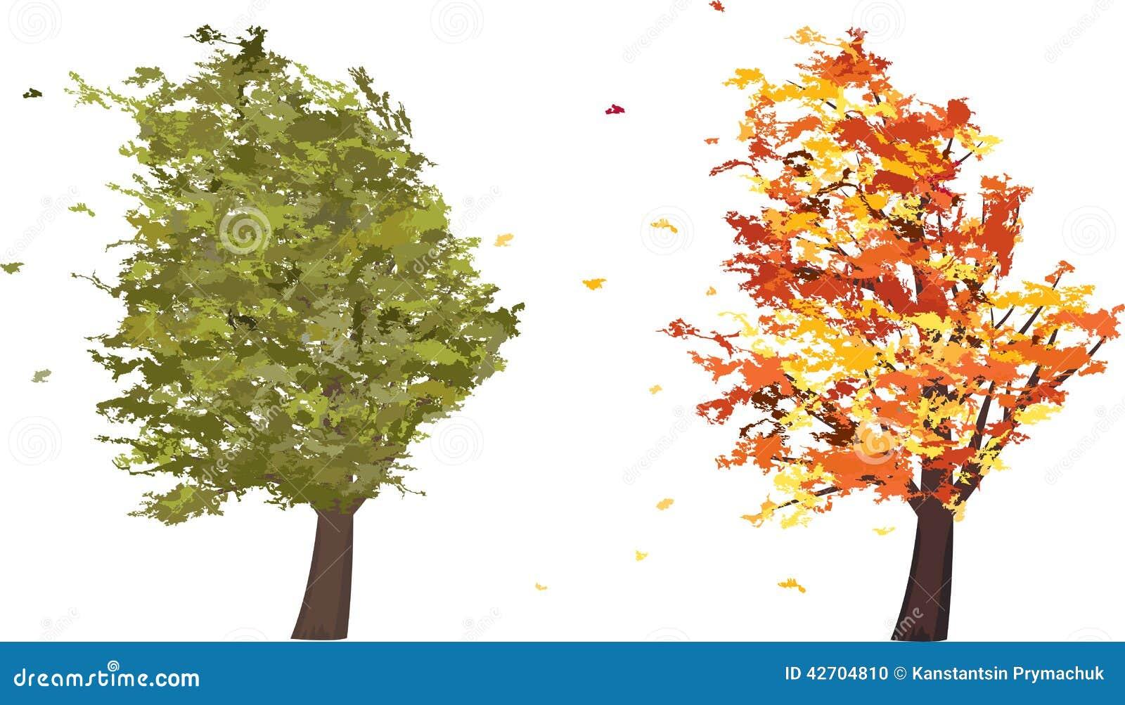 De Herfst En De Zomer Grunge Boom In De Wind Vector Vector Illustratie Illustratie Bestaande Uit Overzicht Decoratie 42704810