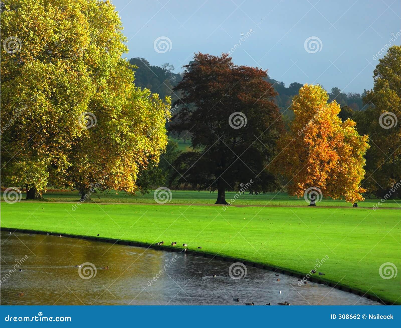 De herfst in Engeland