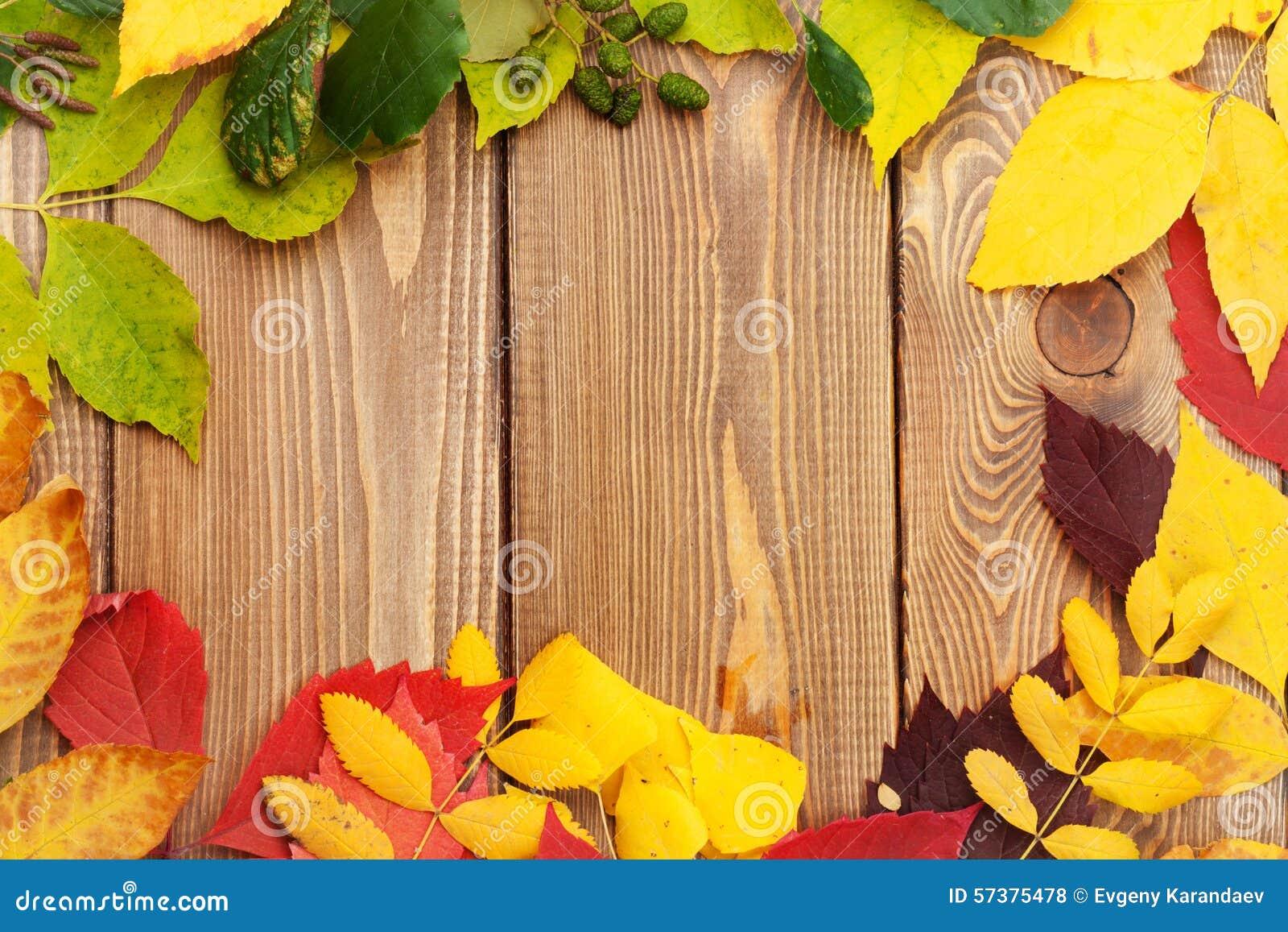 De herfstbladeren over houten achtergrond met exemplaarruimte