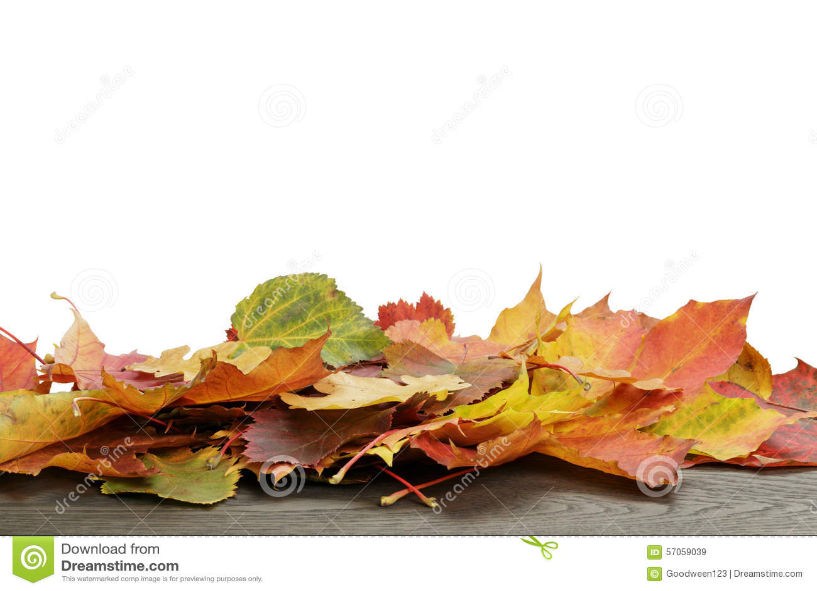 De herfstbladeren voor grenssamenstelling