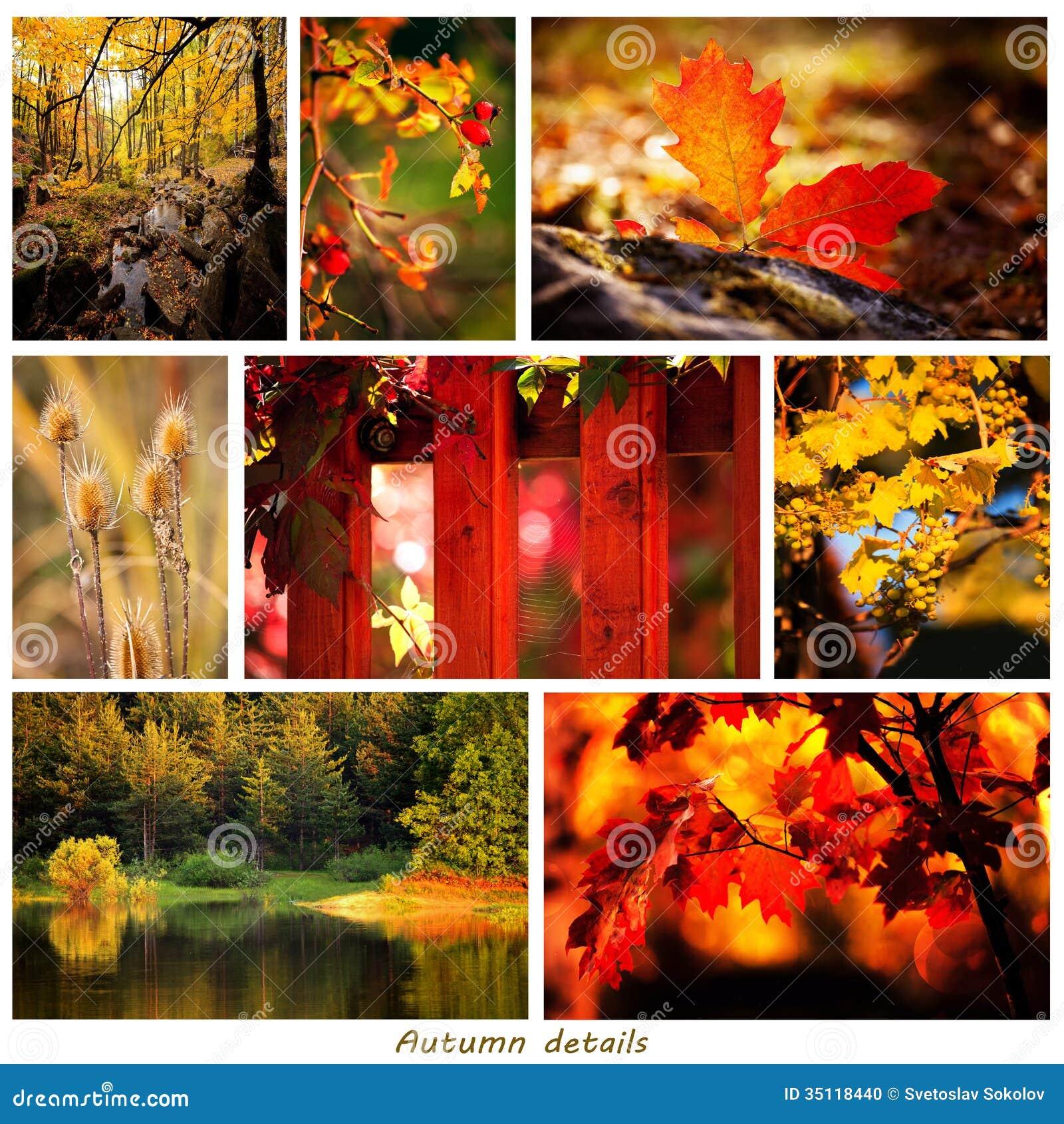 De herfstcollage