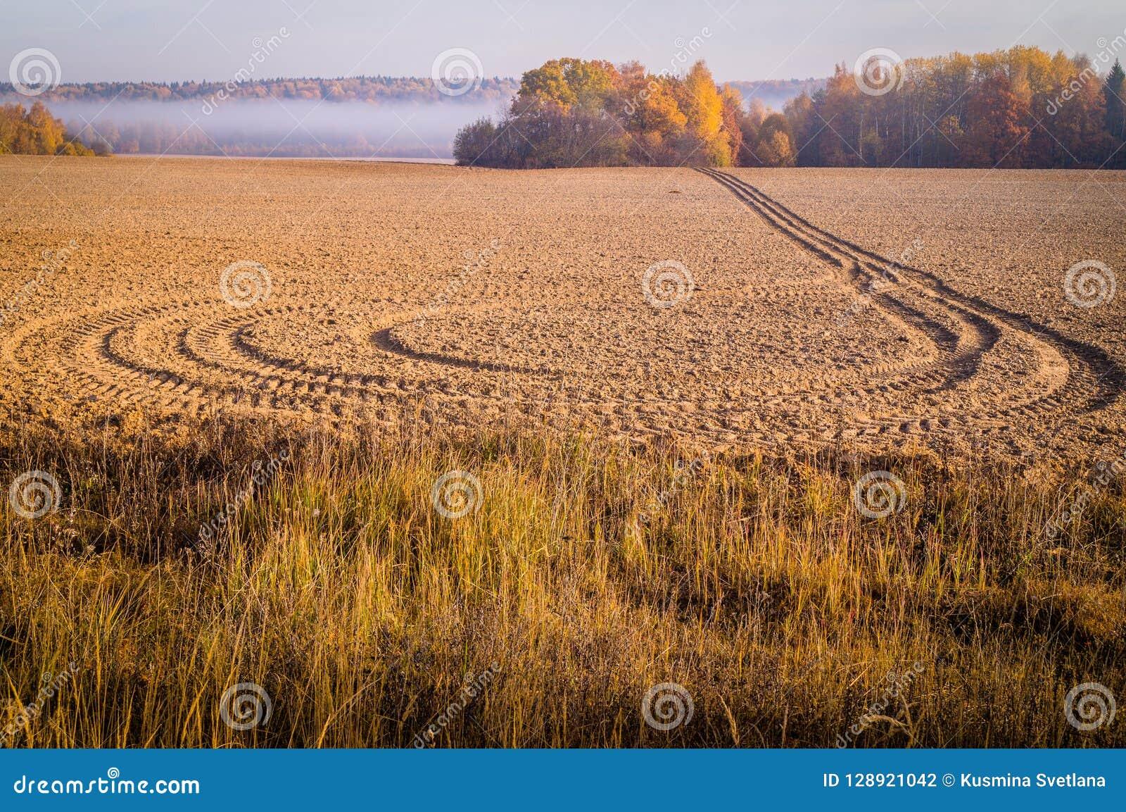 De herfstlandschap met ochtendmist in Centraal Rusland