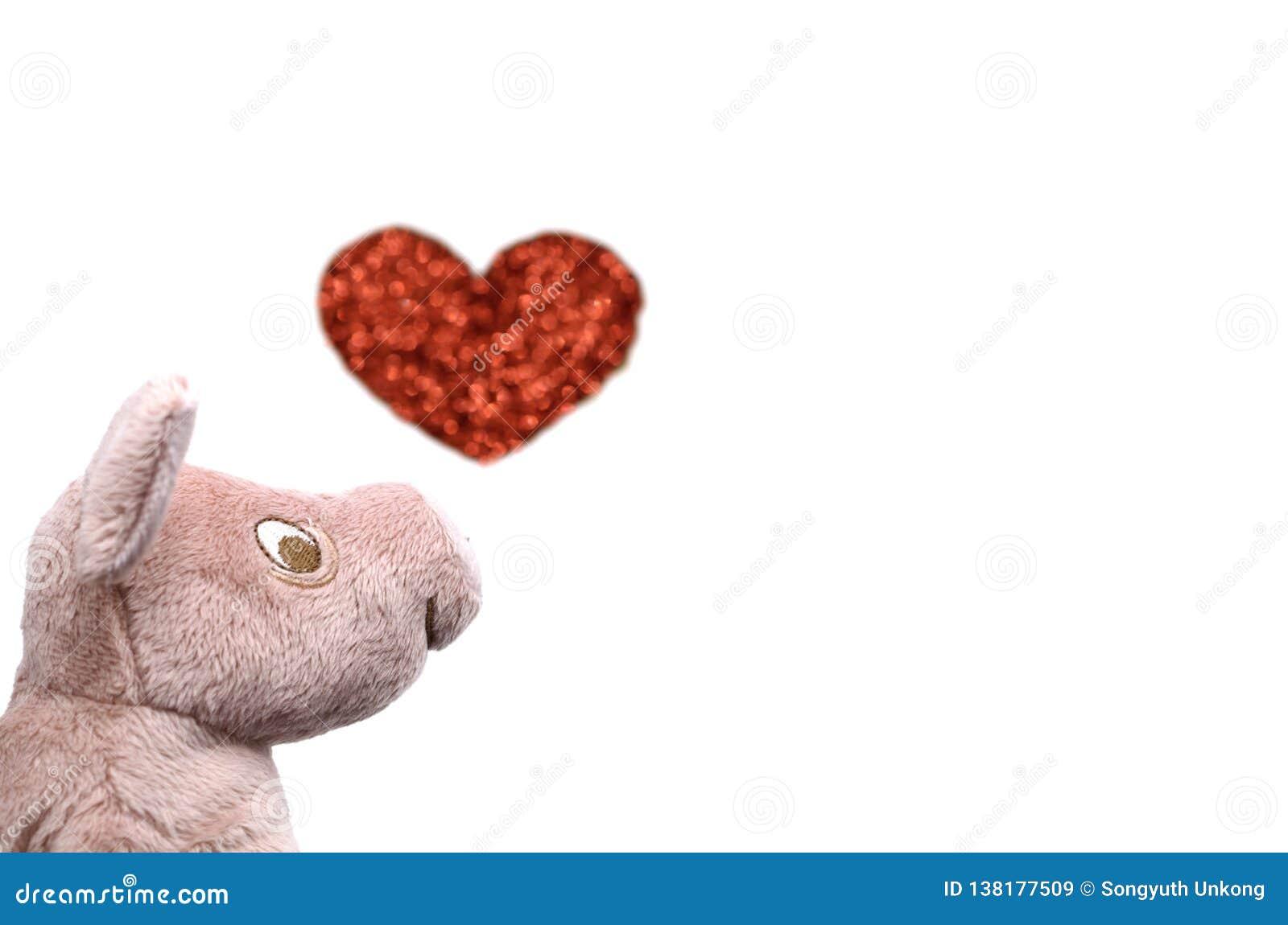 De het glimlachen varkenspop met vage foto van liefdevorm