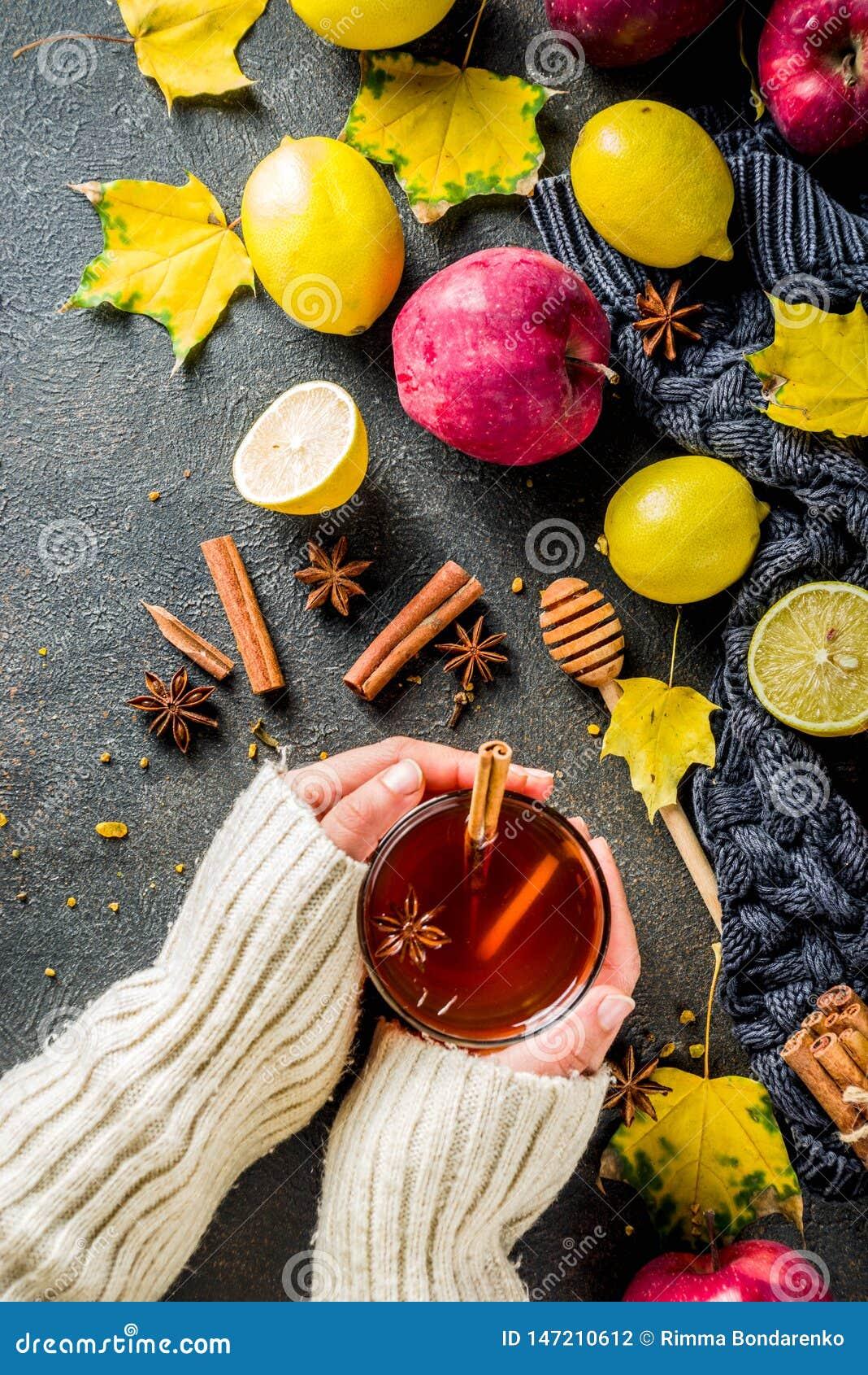 De hete kruidige thee van de de herfstwinter