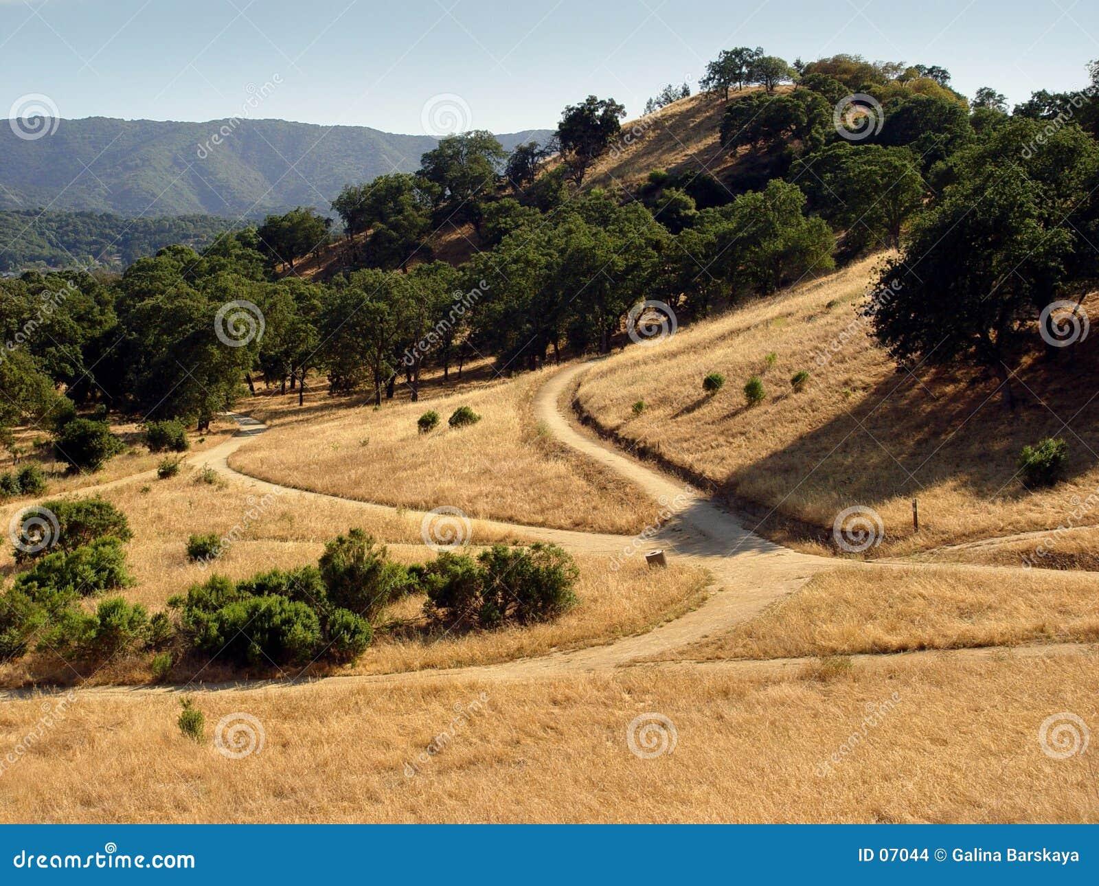 De heuvels van Californië