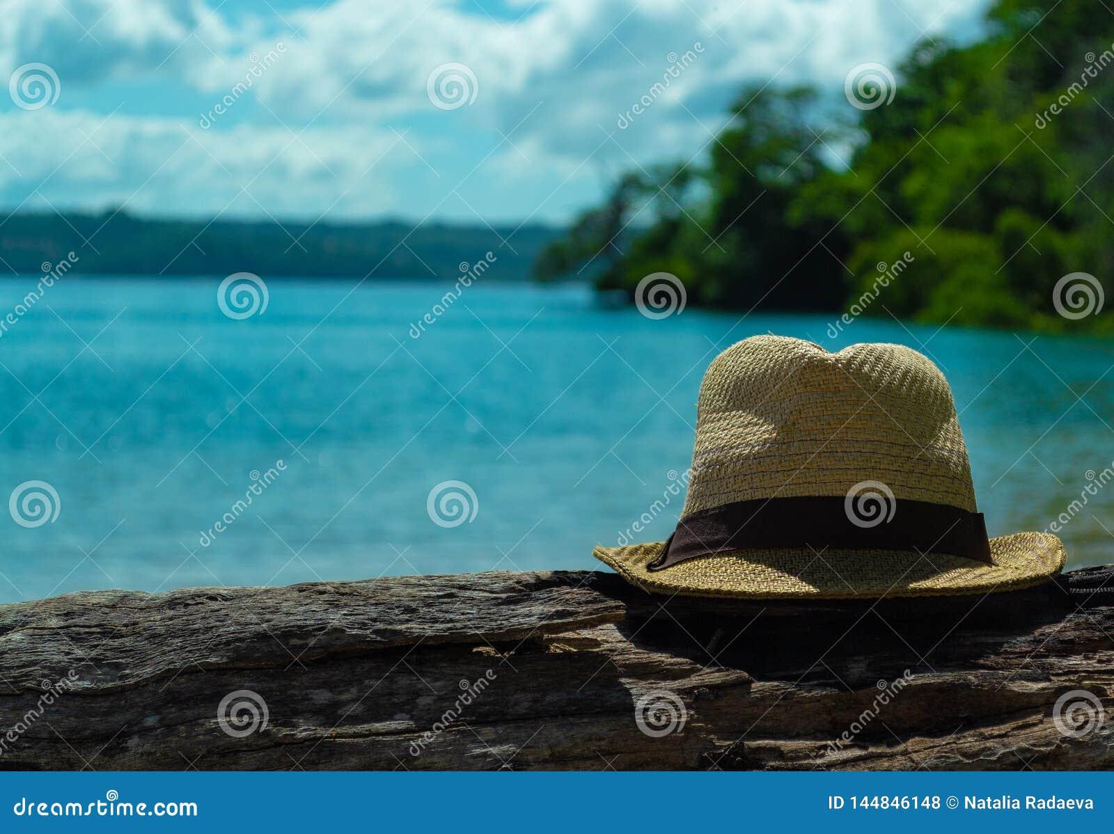 De hoed van mensen is een logboek aan de linkerzijde Mooi Zeegezicht