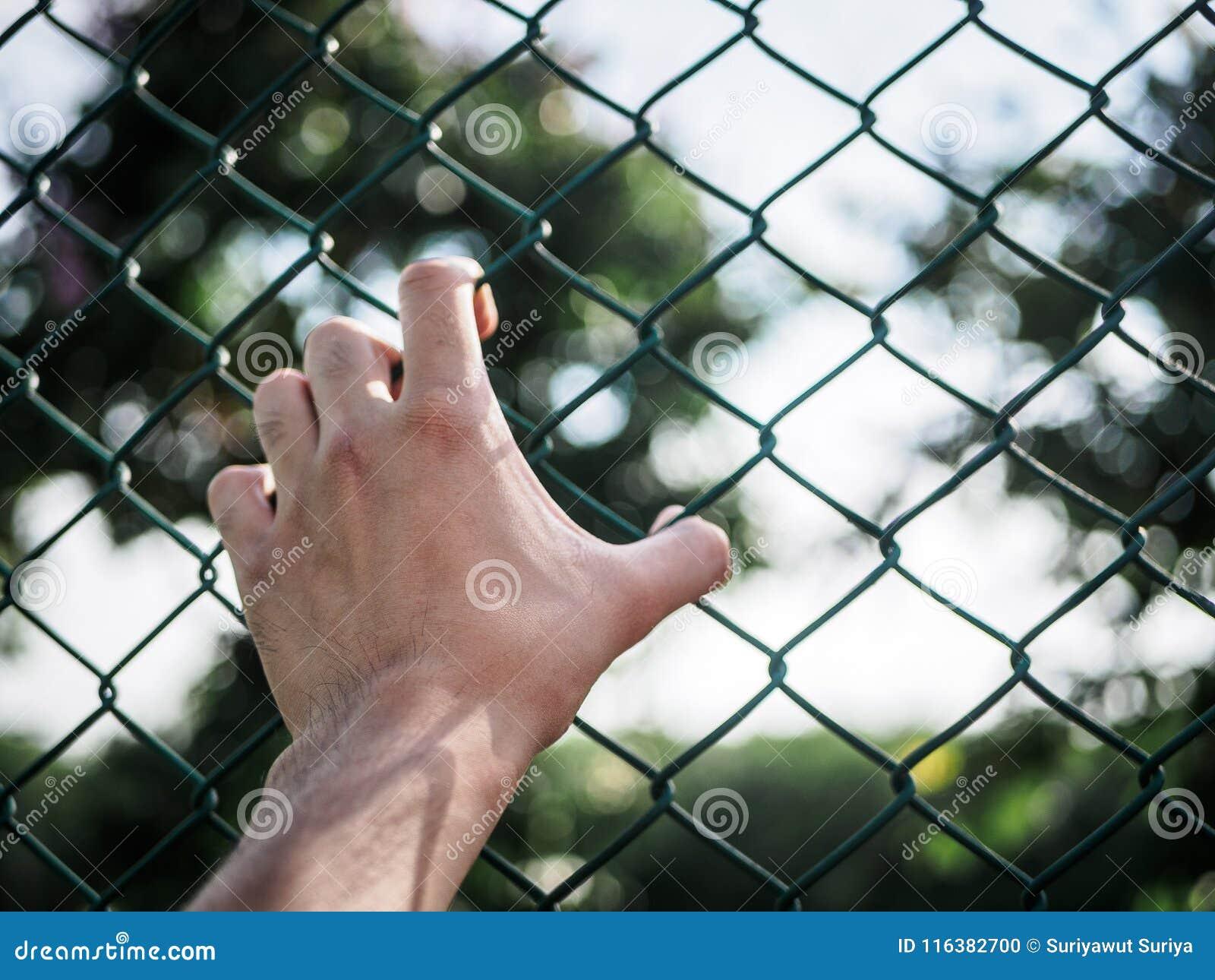 De holding van de mensenhand op de omheining van de kettingsverbinding om Rechten van de mens DA te herinneren