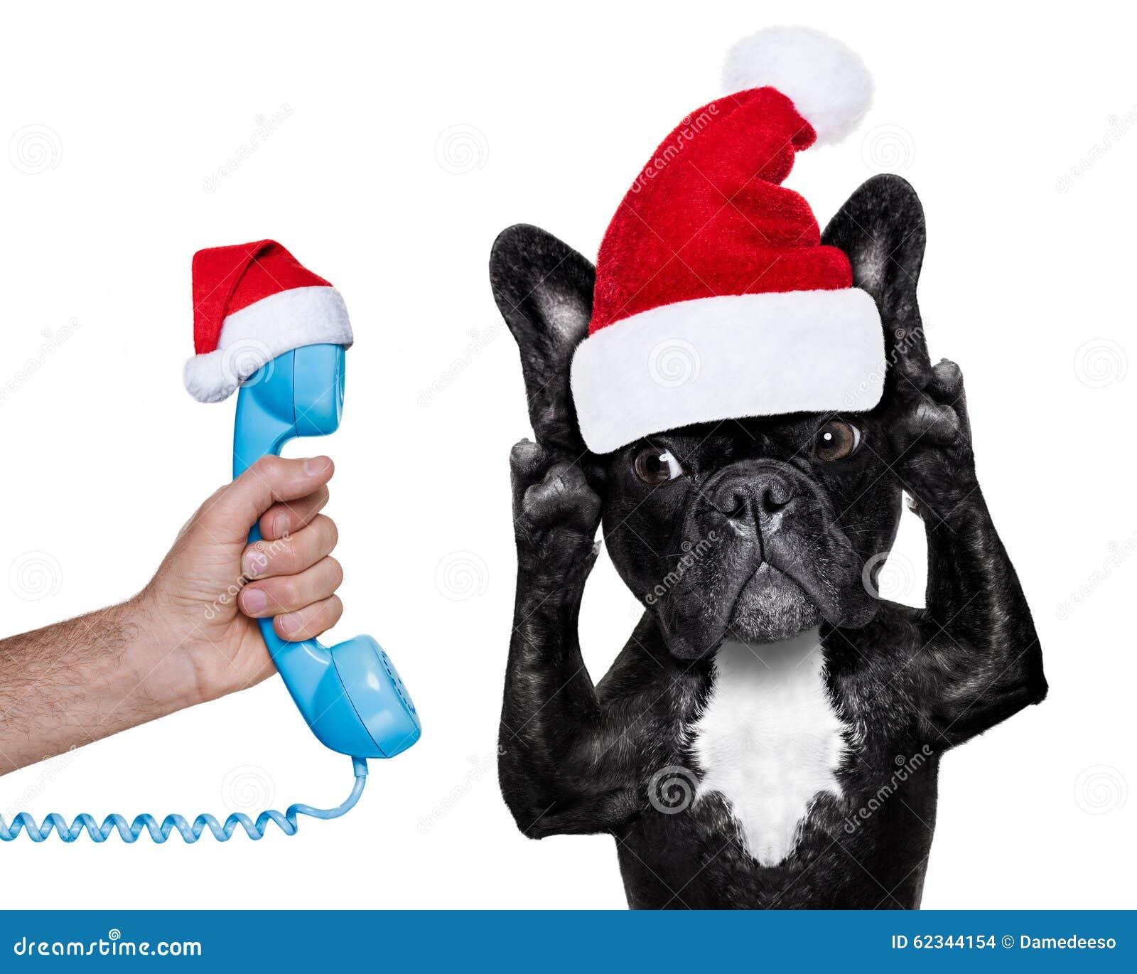 De hond die van de kerstman aan de telefoon luisteren stock foto afbeelding 62344154 - Secretaresse witte ...