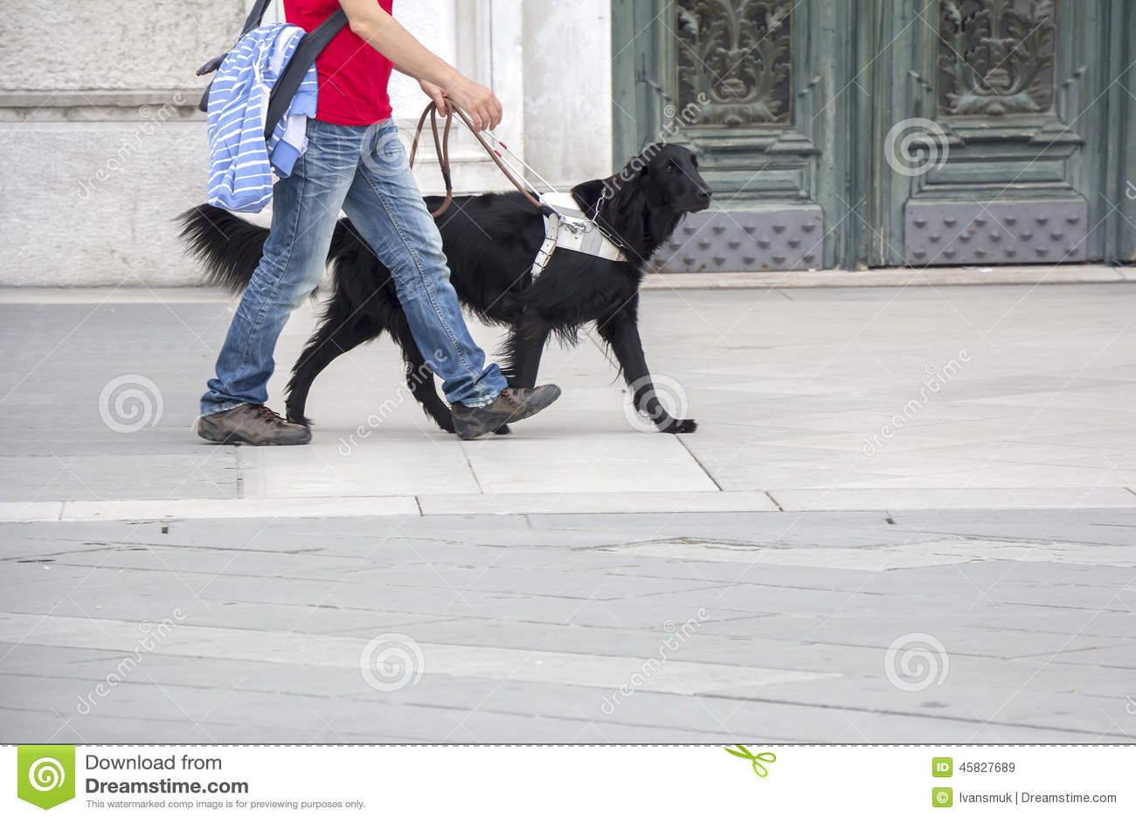 De hond van de gids helpt een blinde