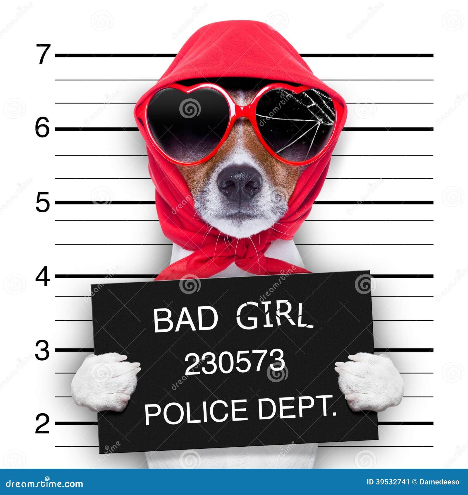De hond van de Mugshotdame