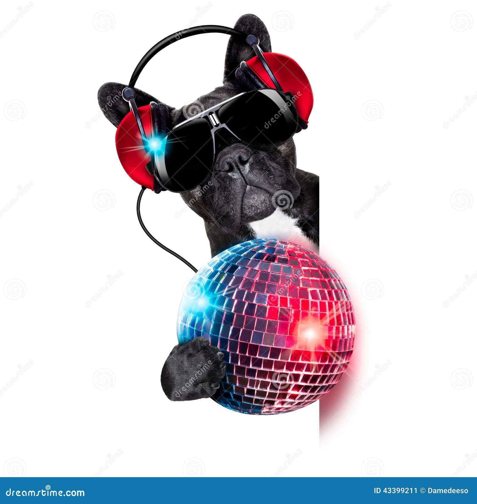 De hond van DJ