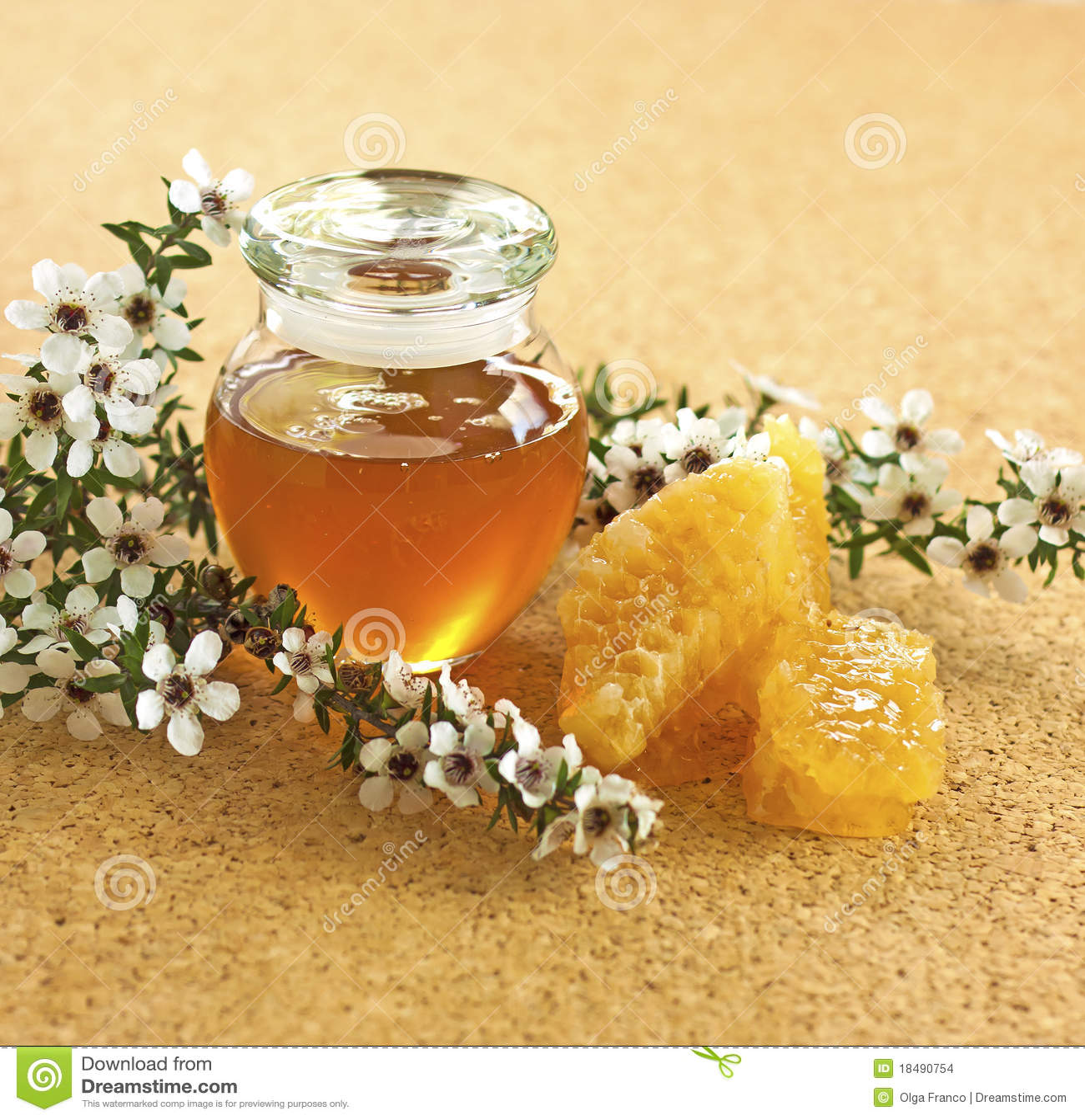 De honing van Manuka