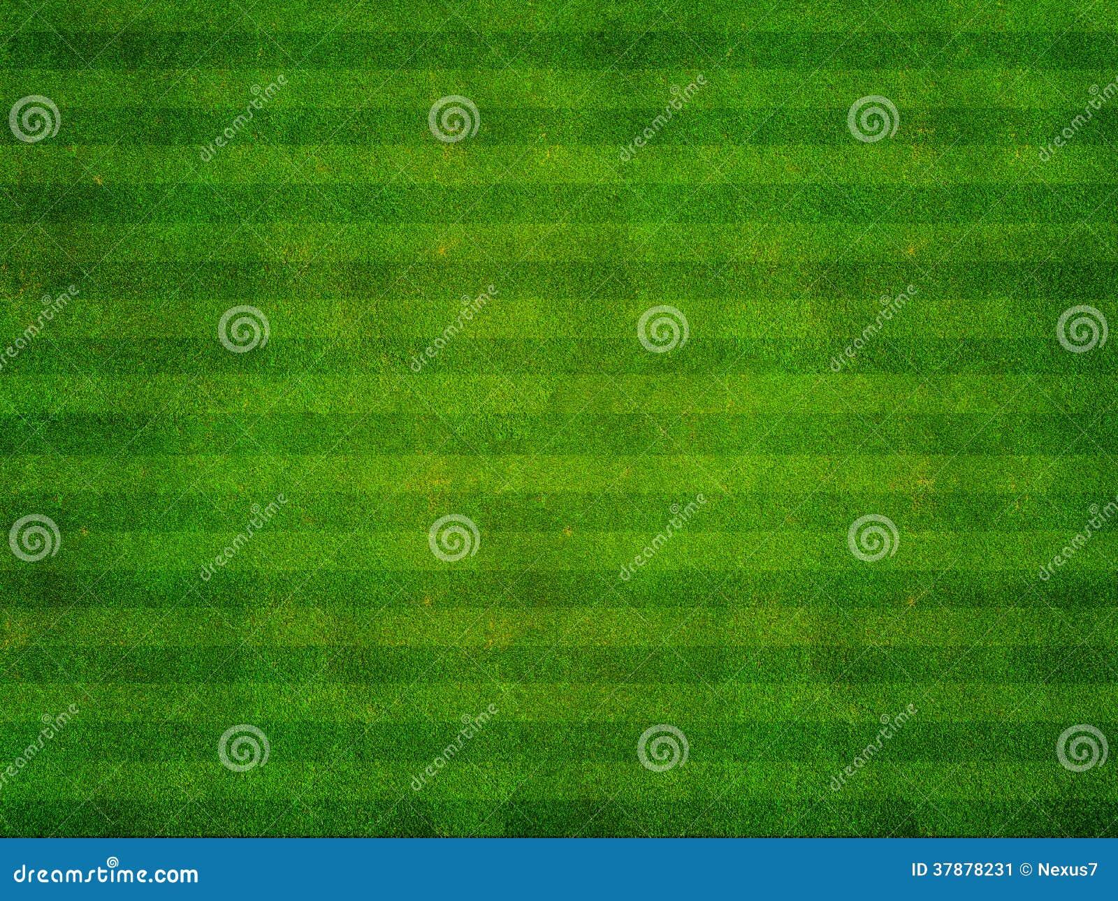 De Hoogste Mening van het grassportterrein