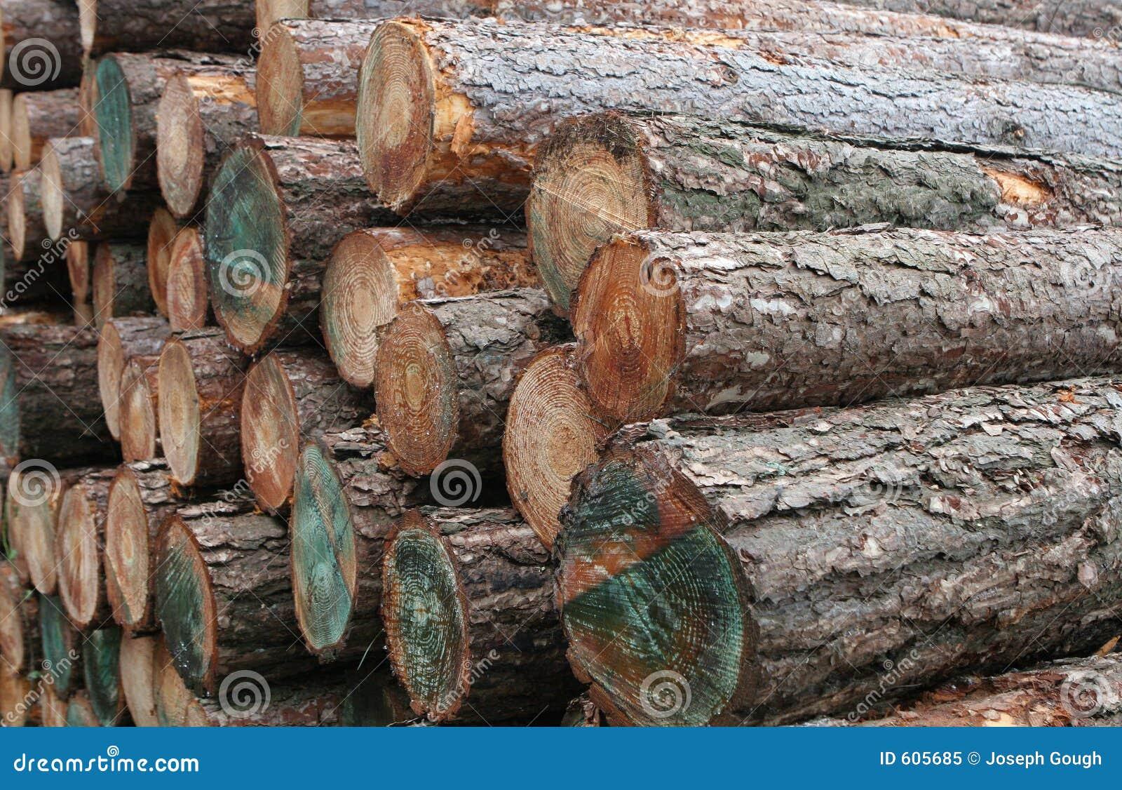 De houten Logboeken van het Hout