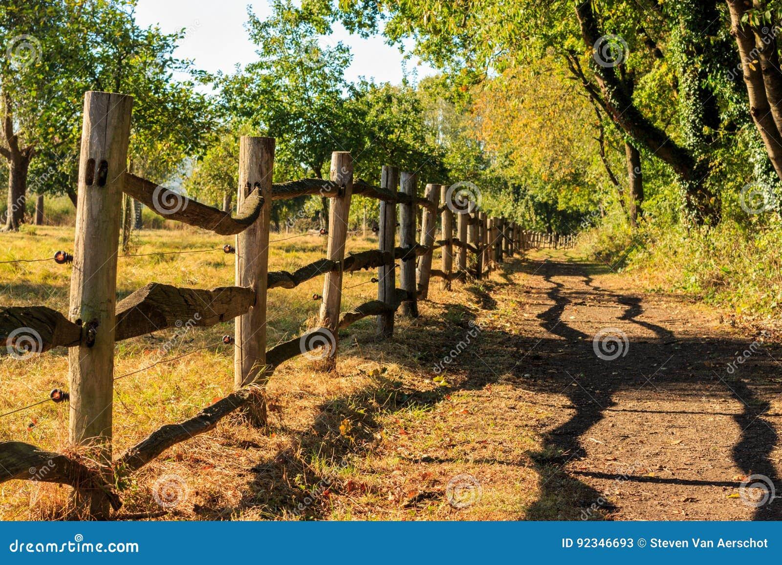 De houten omheining werpt schaduw af Het Vinne, Zoutleeuw, Vlaanderen, Belgi