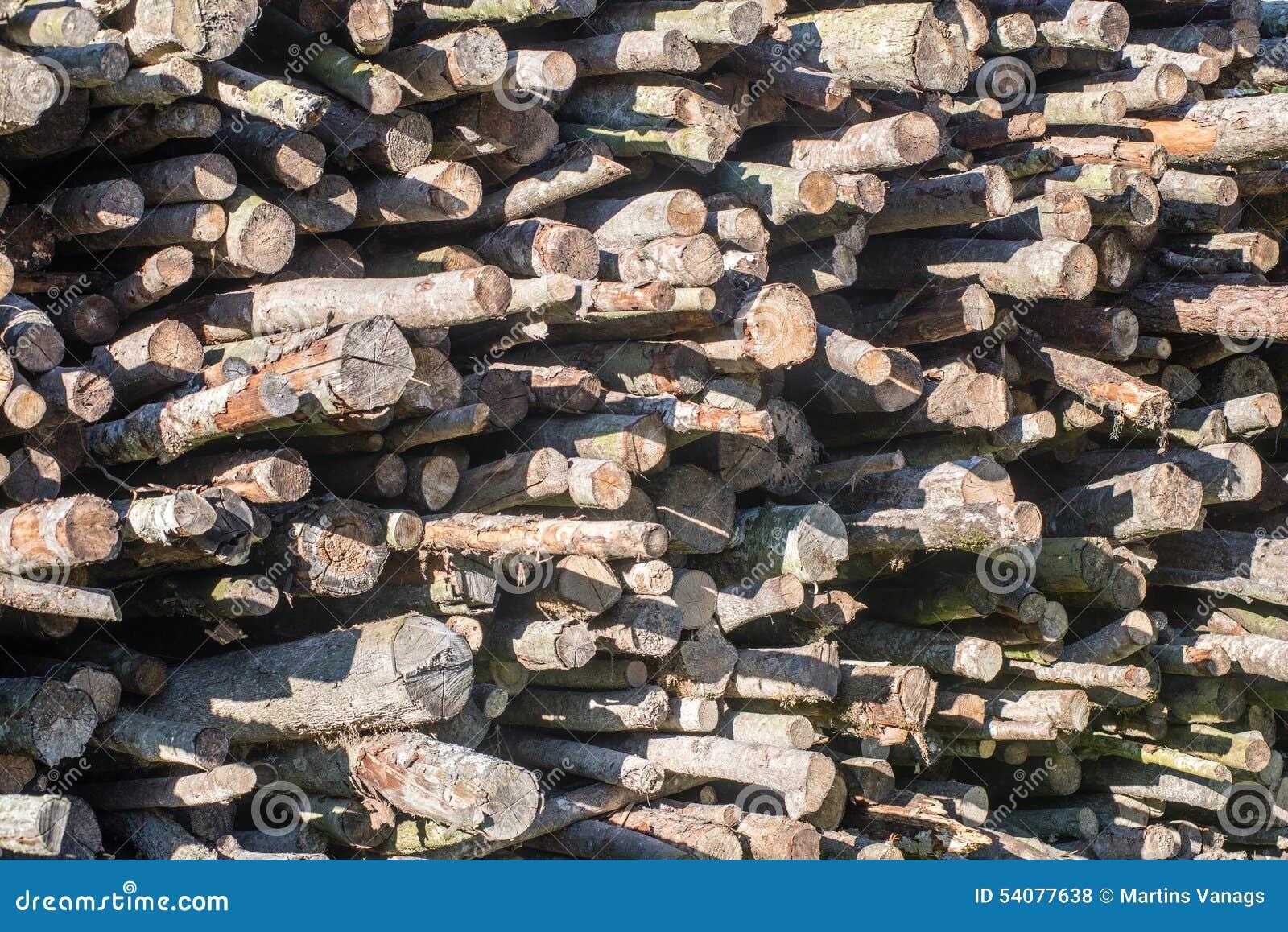De houten plaats van de logboekopslag