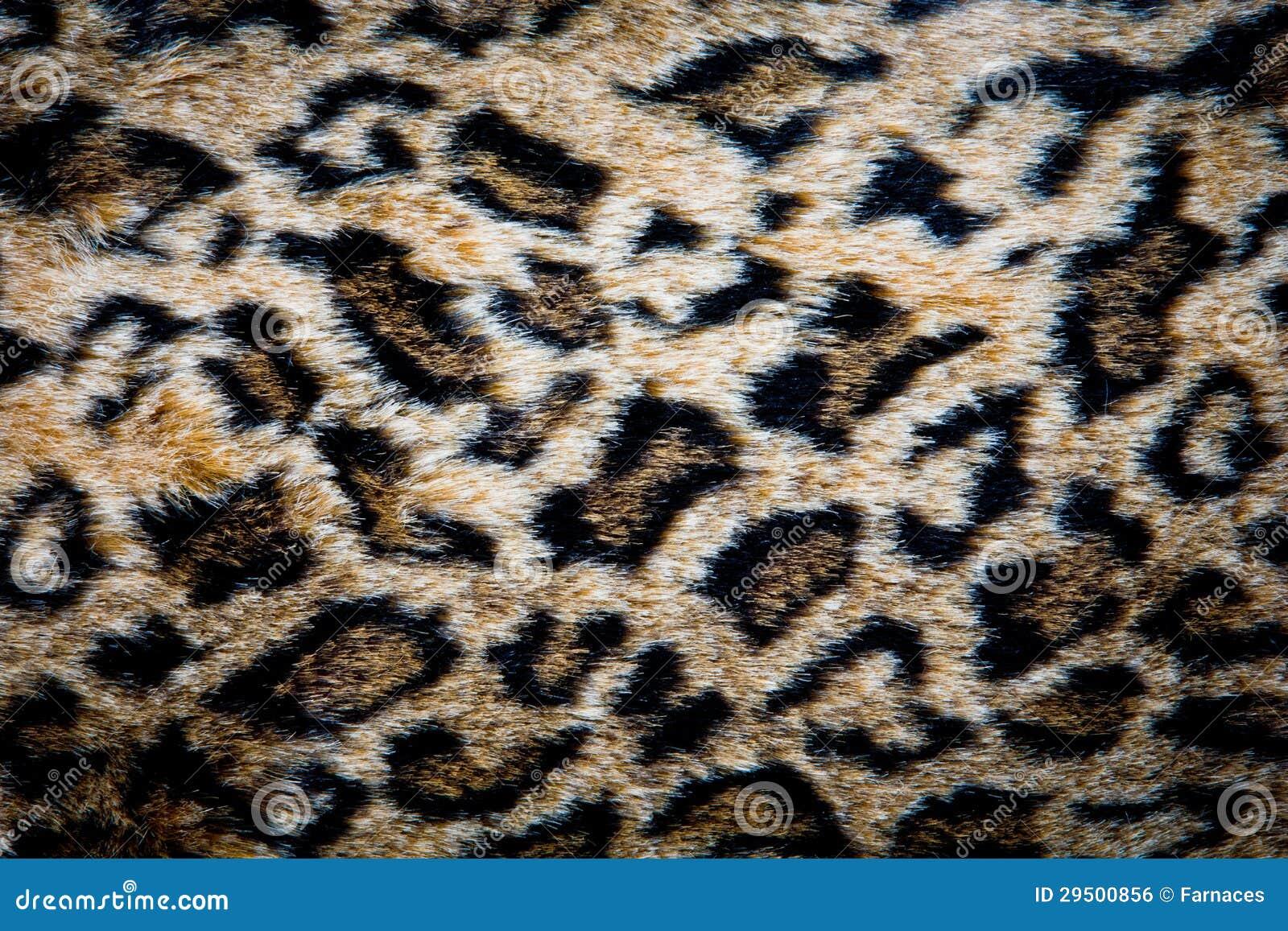 De huidtextuur van de luipaard