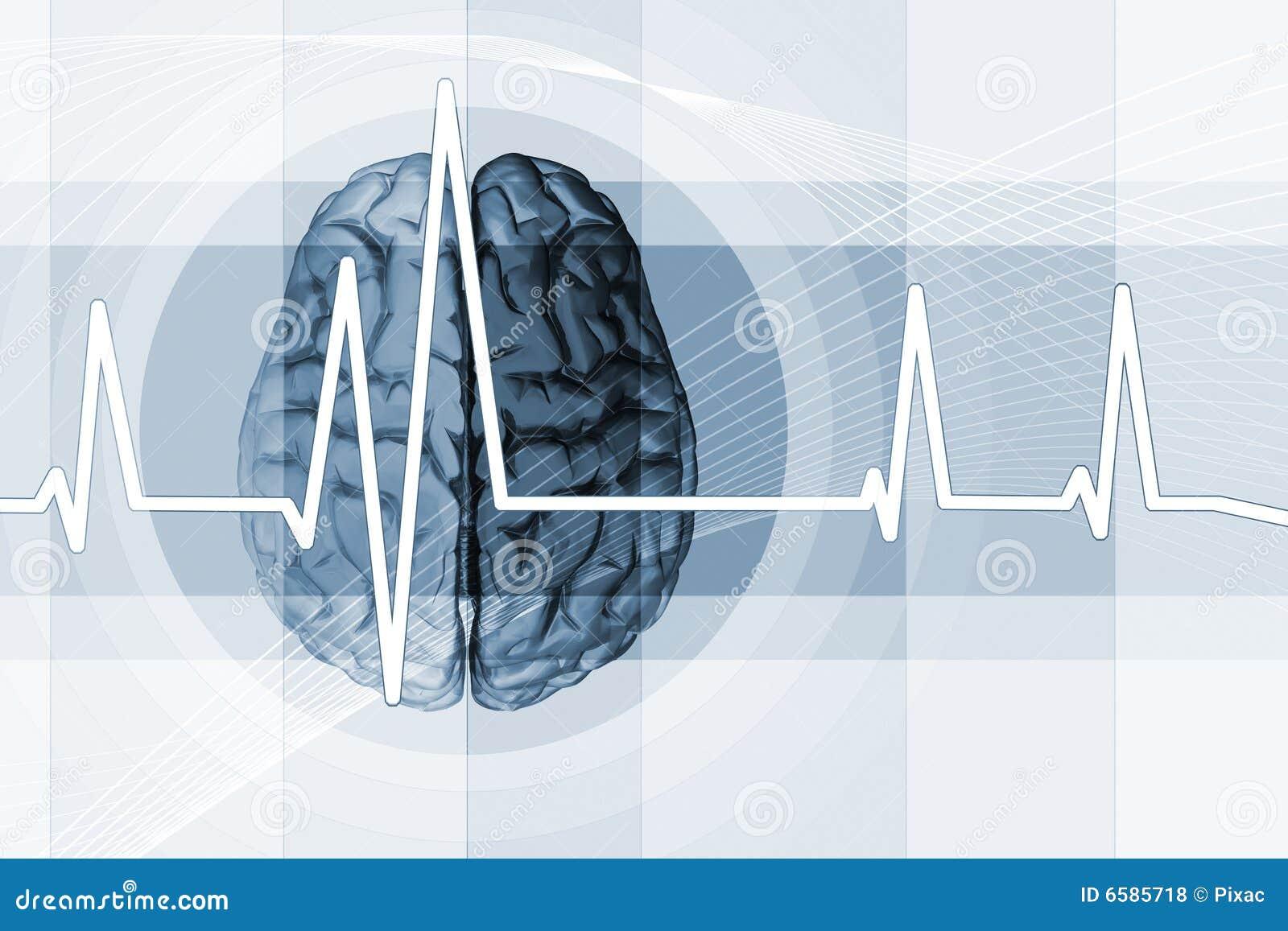 De Impuls van hersenen